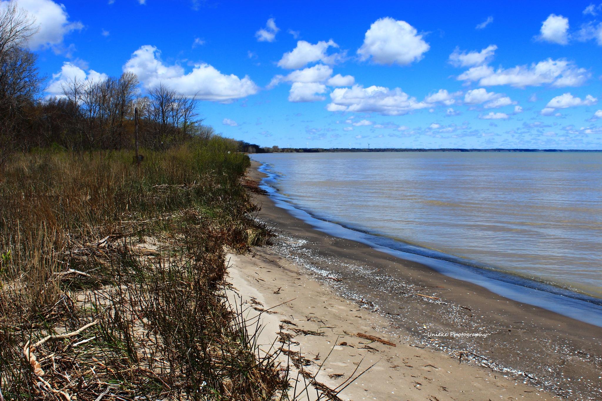 Erie Beach by ~Unieke Photography~