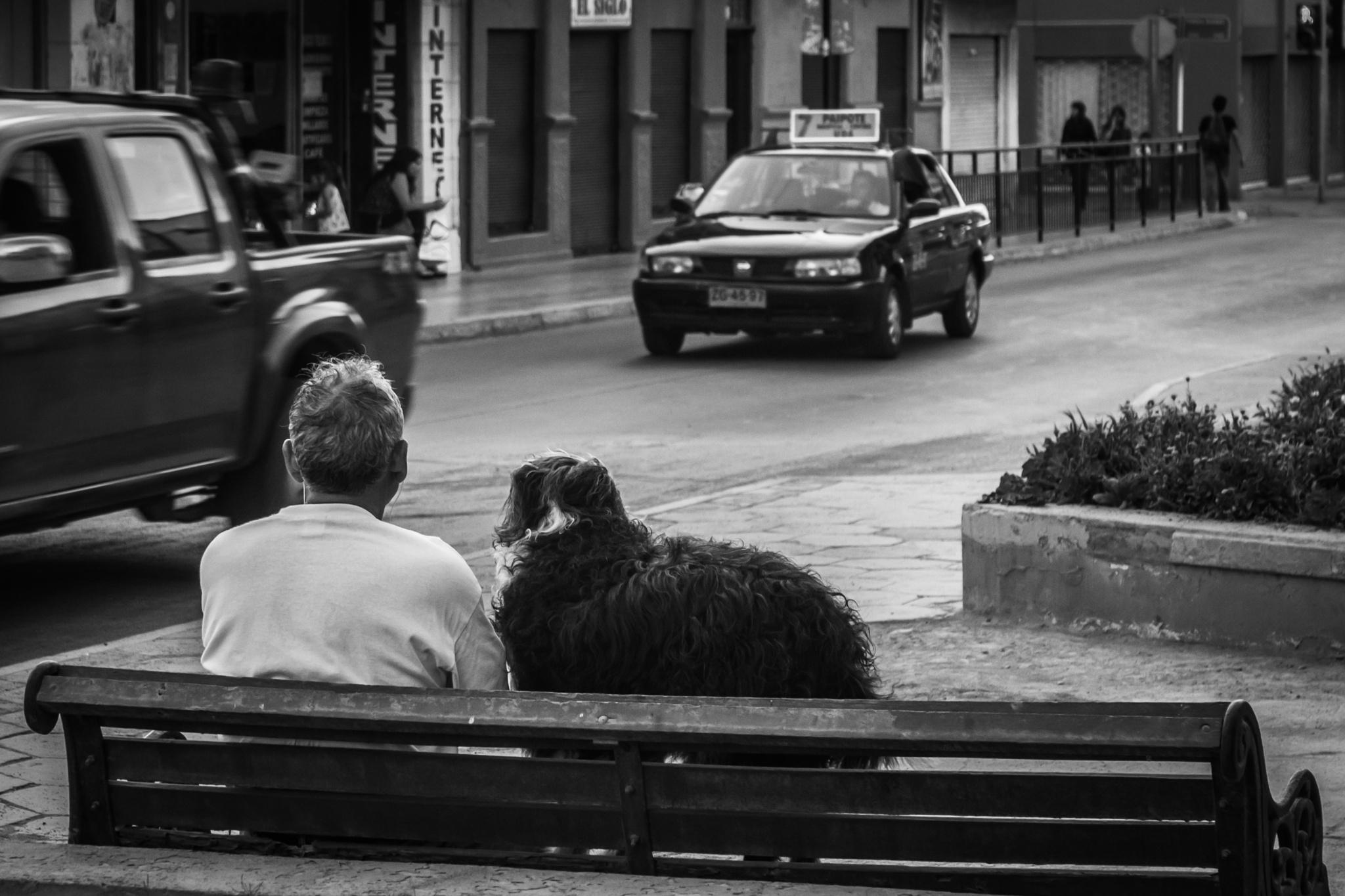 Amigos by FlaviuCodorean