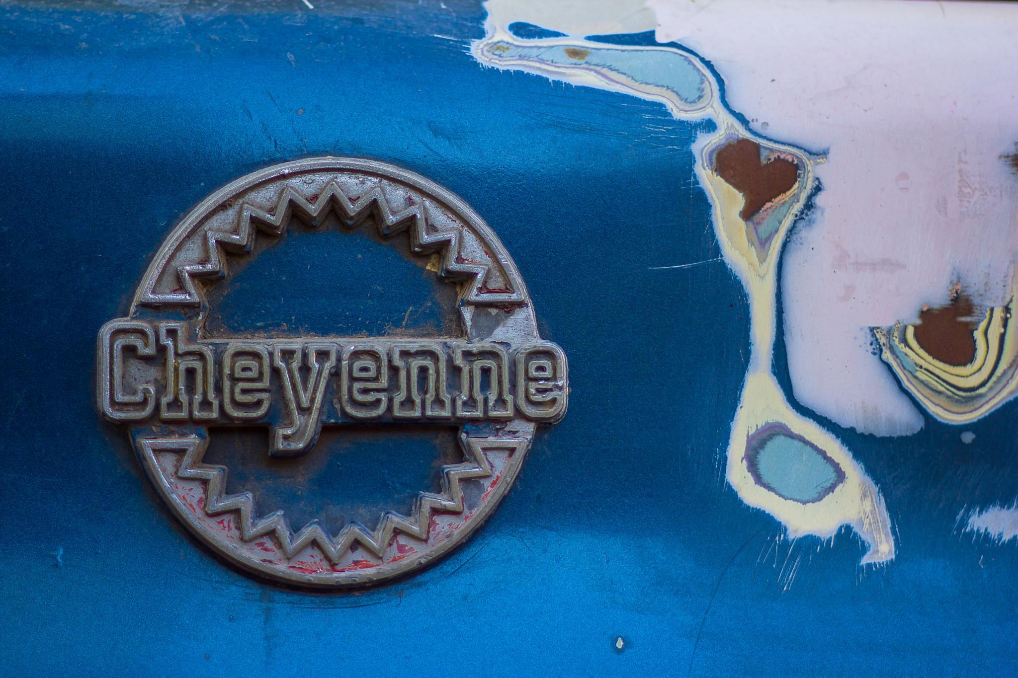 Cheyenne by FlaviuCodorean