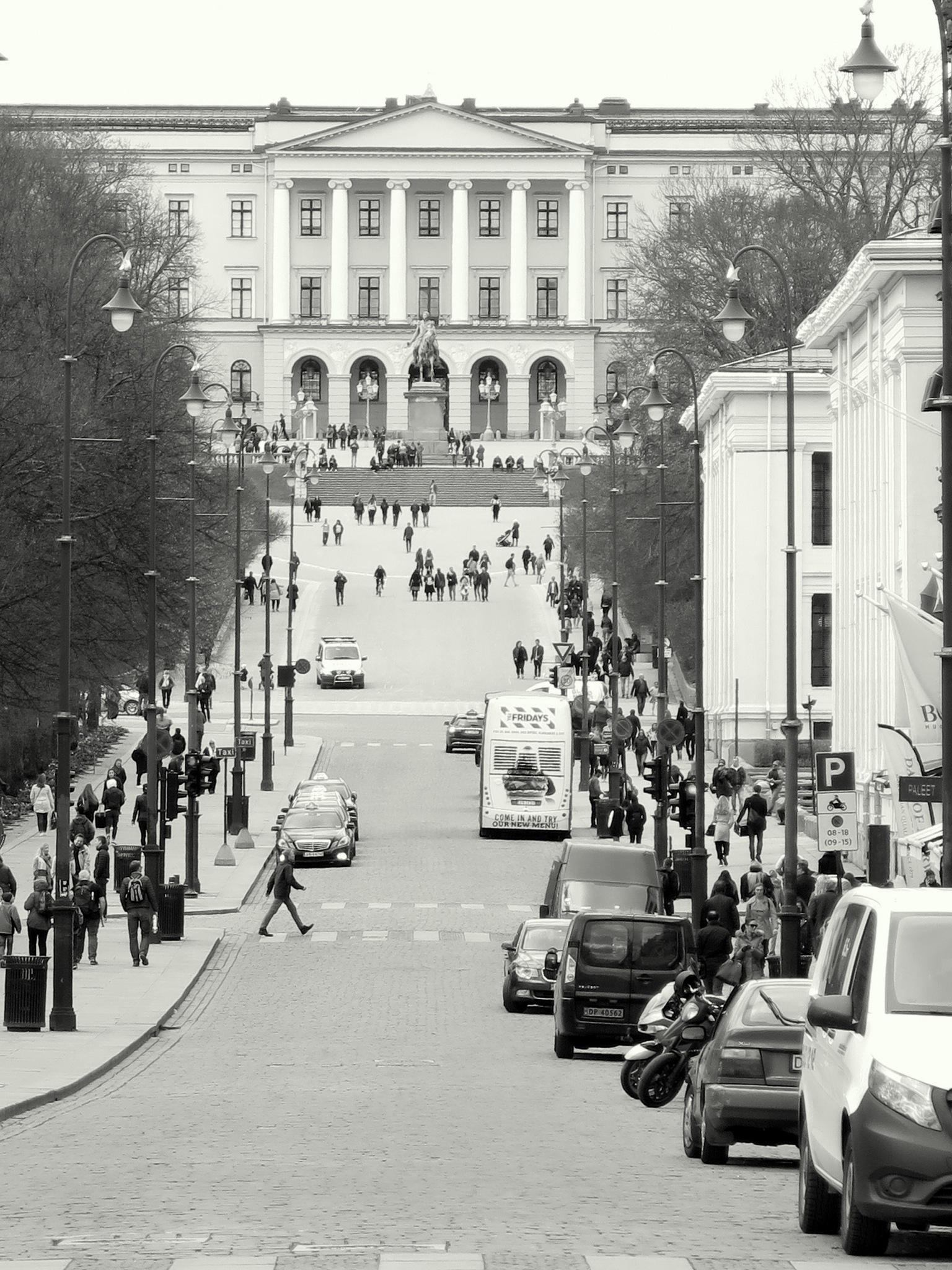 Oslo by Abdelmuhaymin