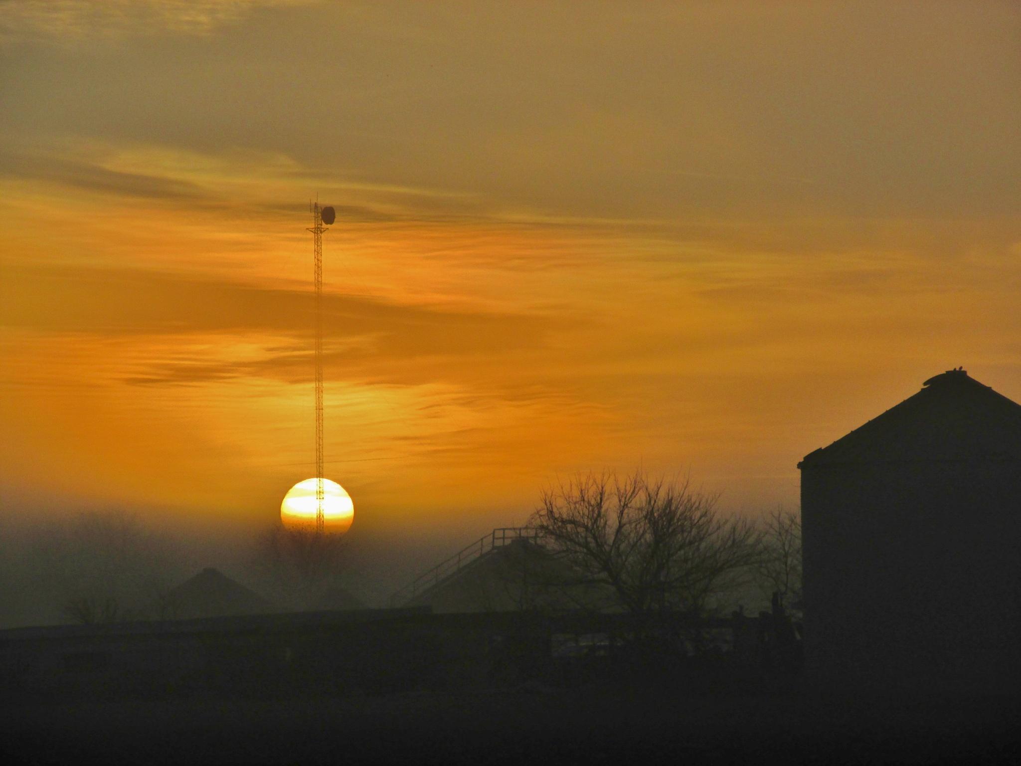 Foggy sunrise by debbylesko