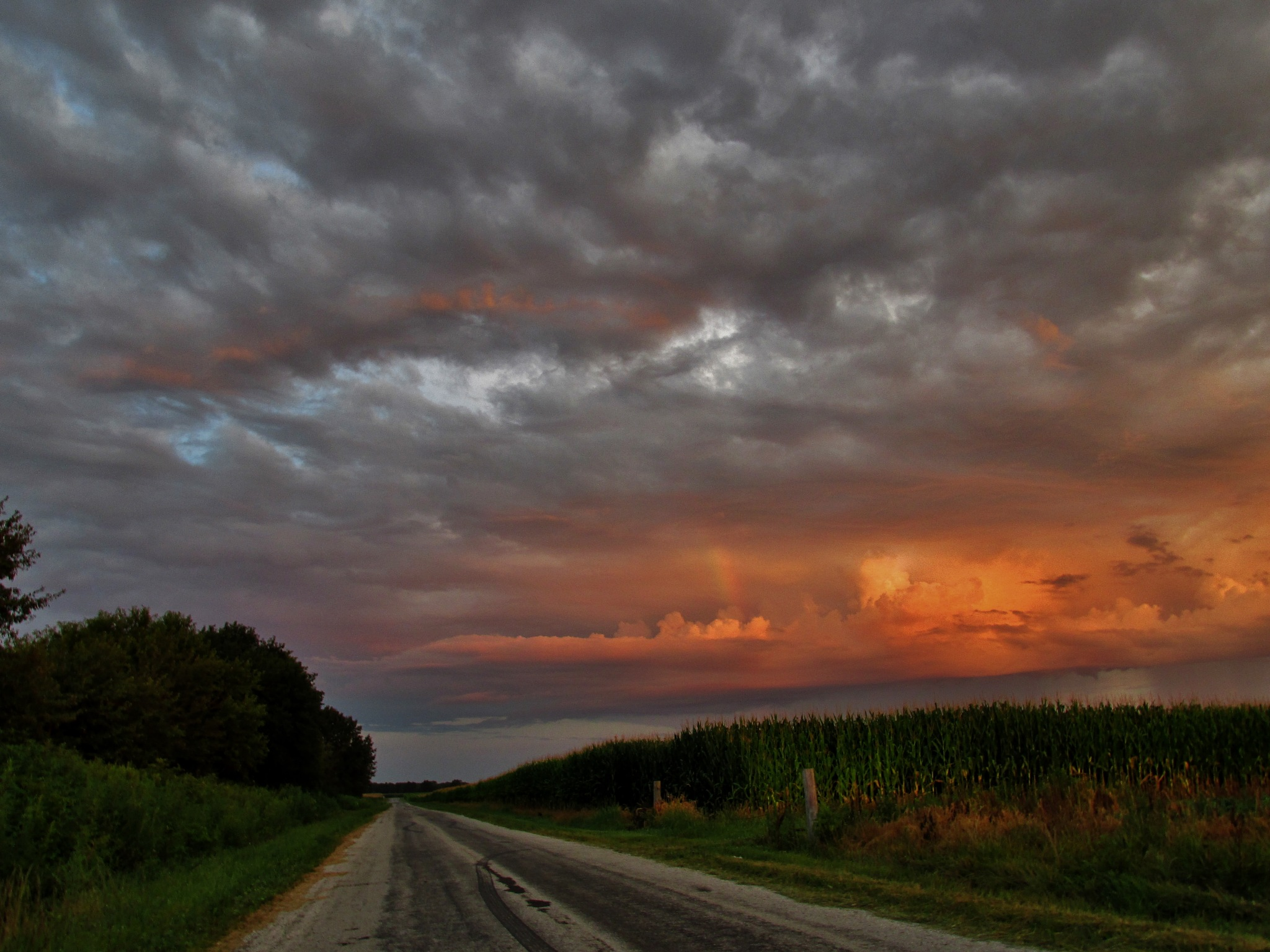 Country road to work by debbylesko