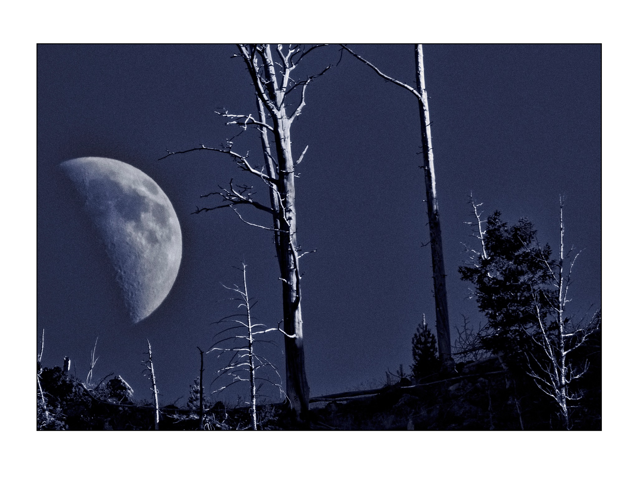 Moonrise over Montana by jhulton