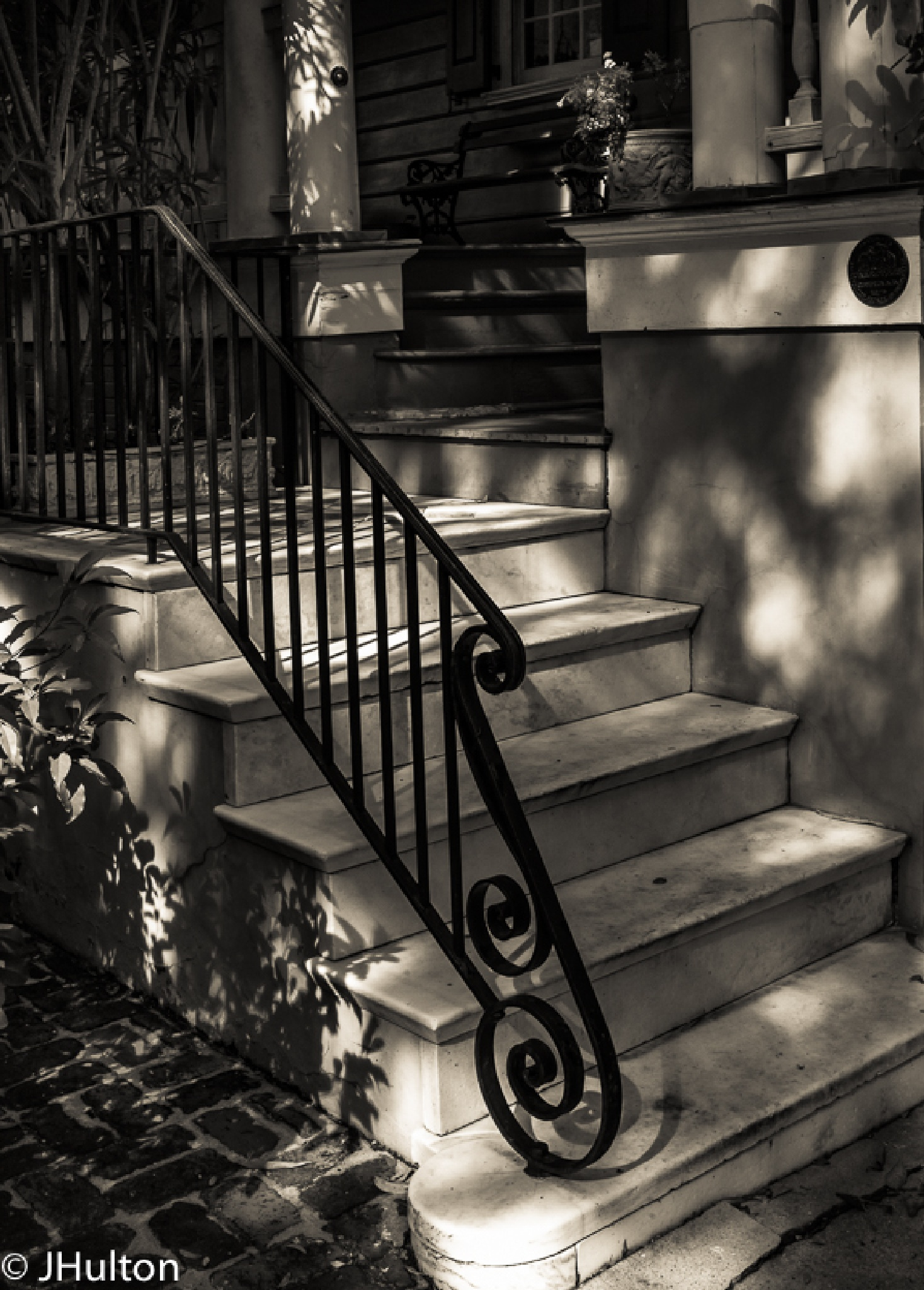 The Steps of Charleston by jhulton