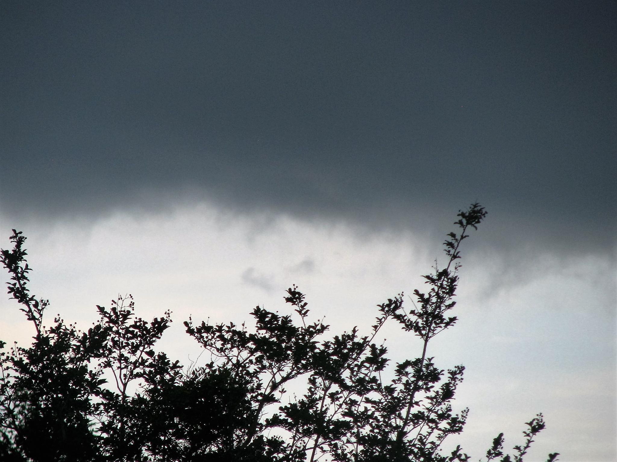 Stormy Evening 2 by nelda.sue