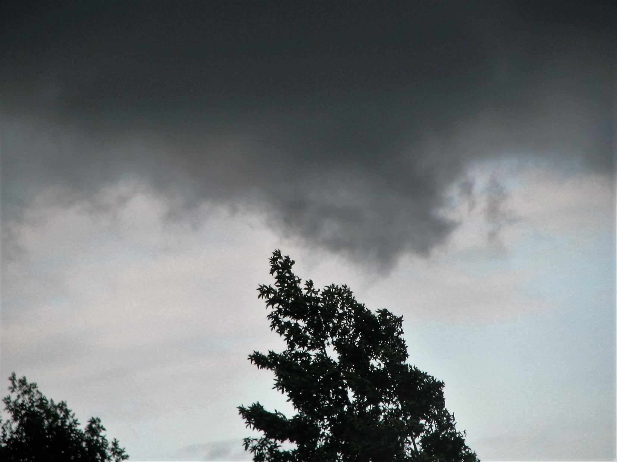 Stormy Evening 1 by nelda.sue