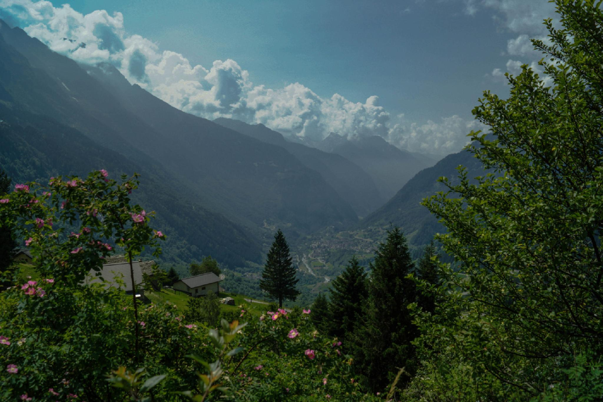 Looking out of the Alps by Jane.lindbladh