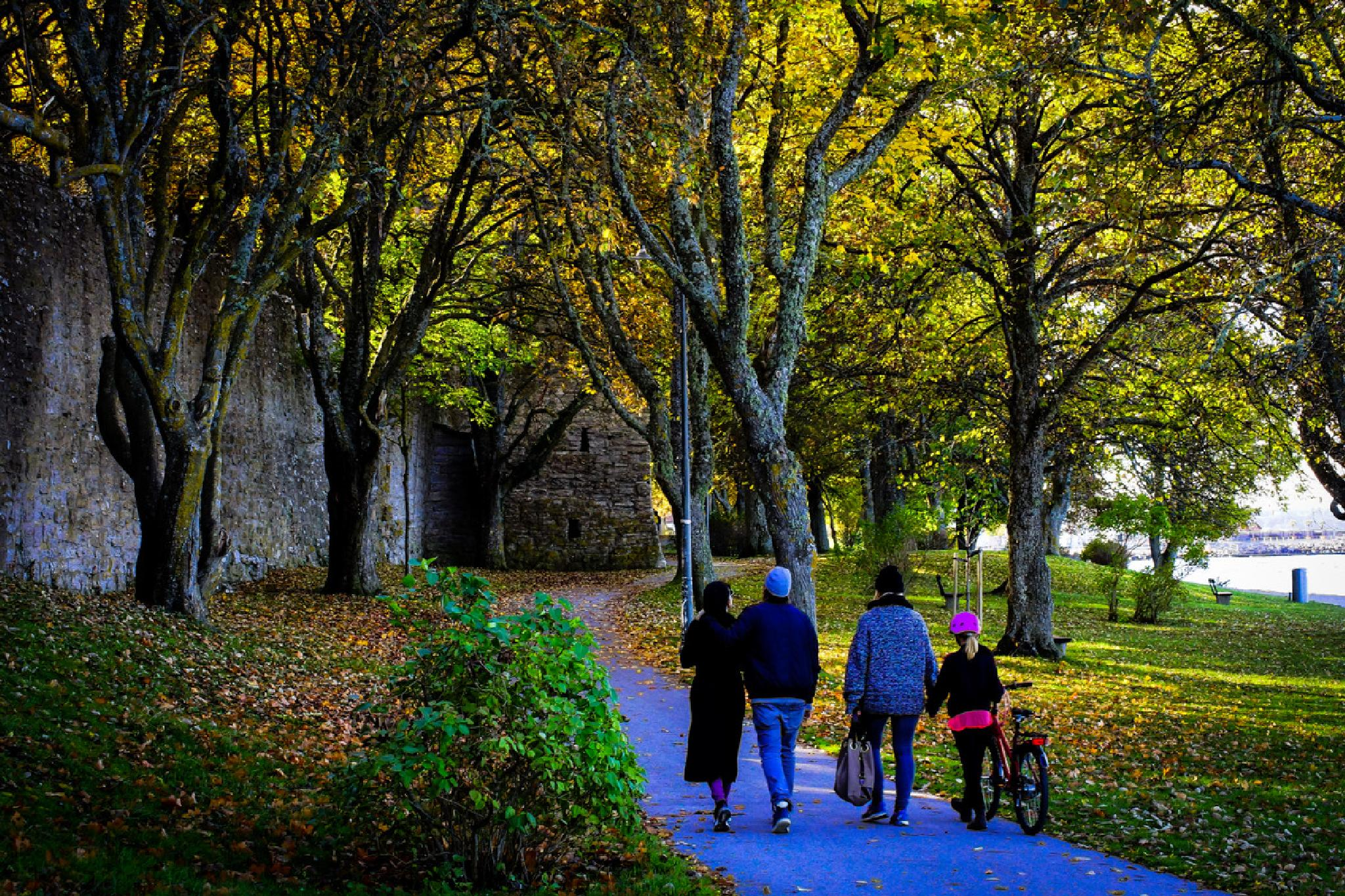 Family walk in the autumn by Jane.lindbladh