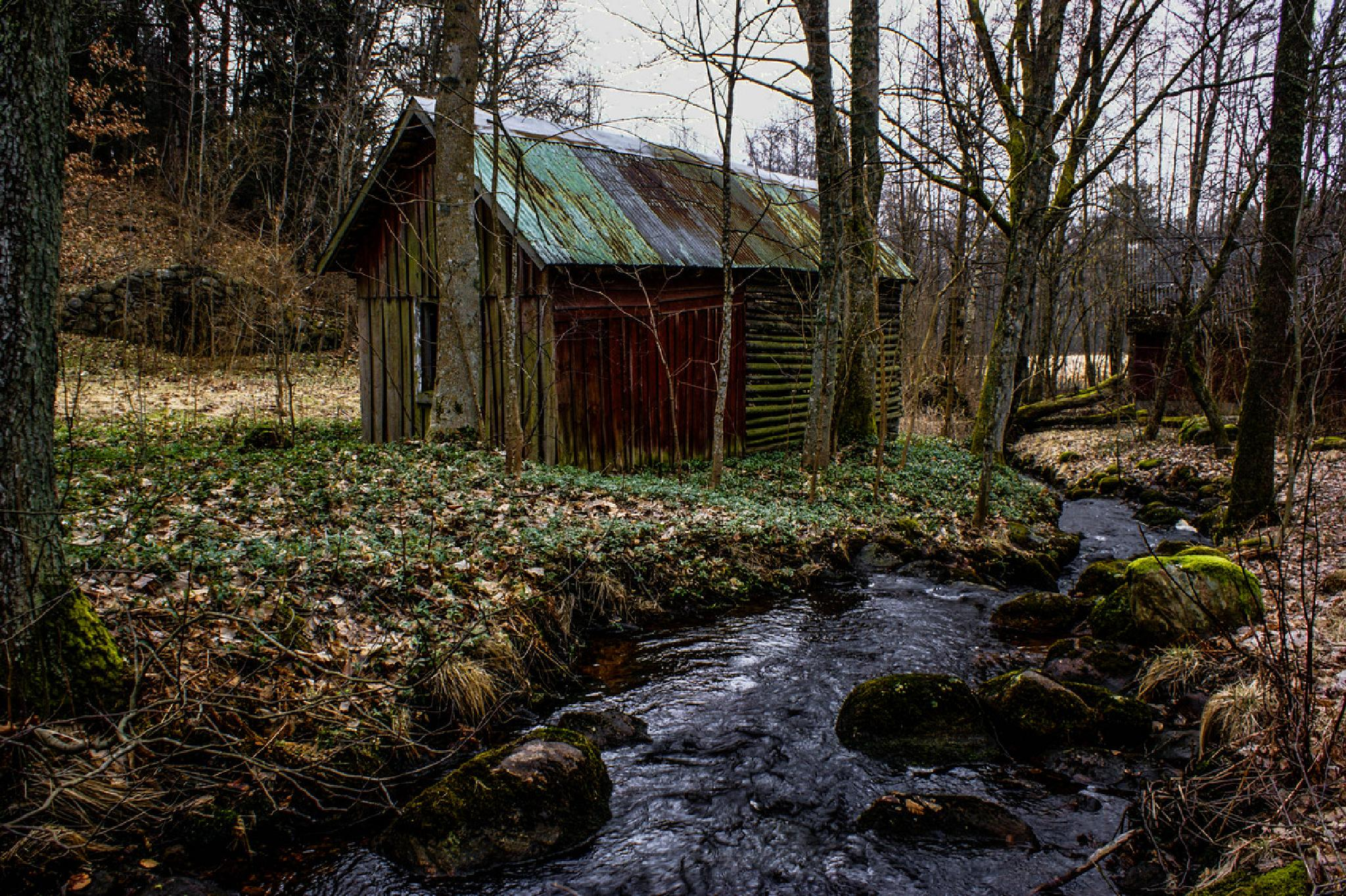 Forgotten house in the forrest by Jane.lindbladh