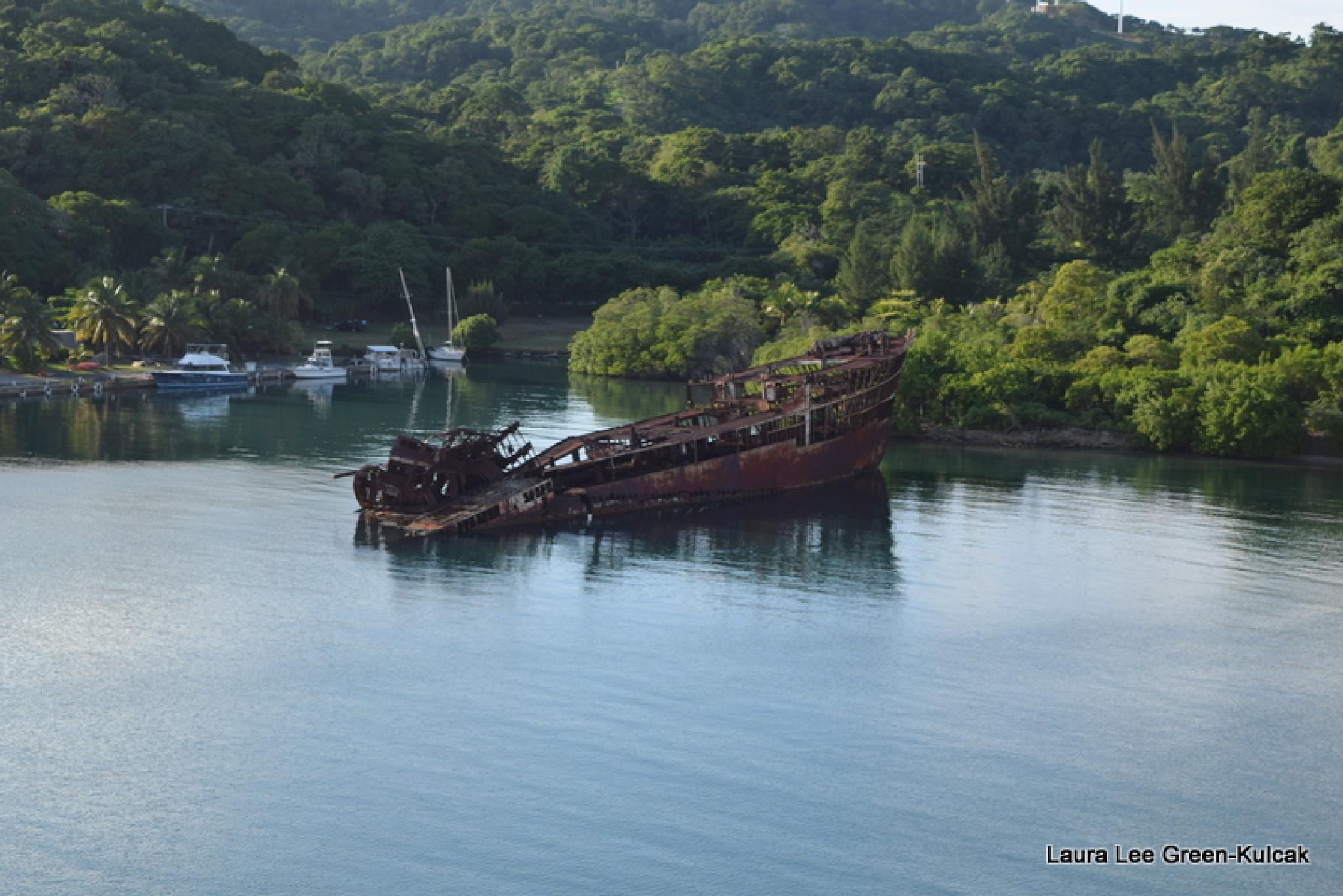 Shipwreak  by Laura Lee Green-Kulcak