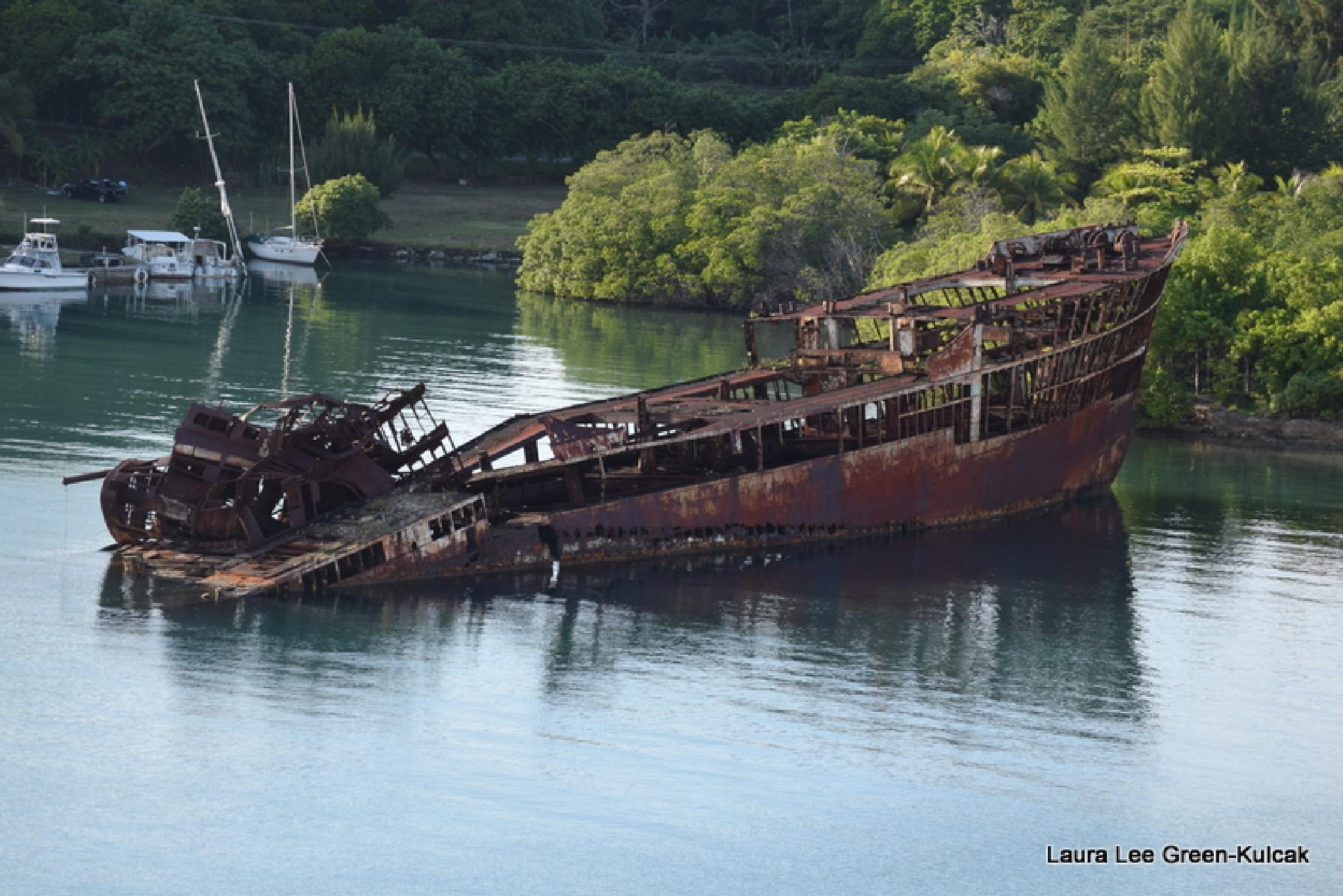Shipwreak up close by Laura Lee Green-Kulcak