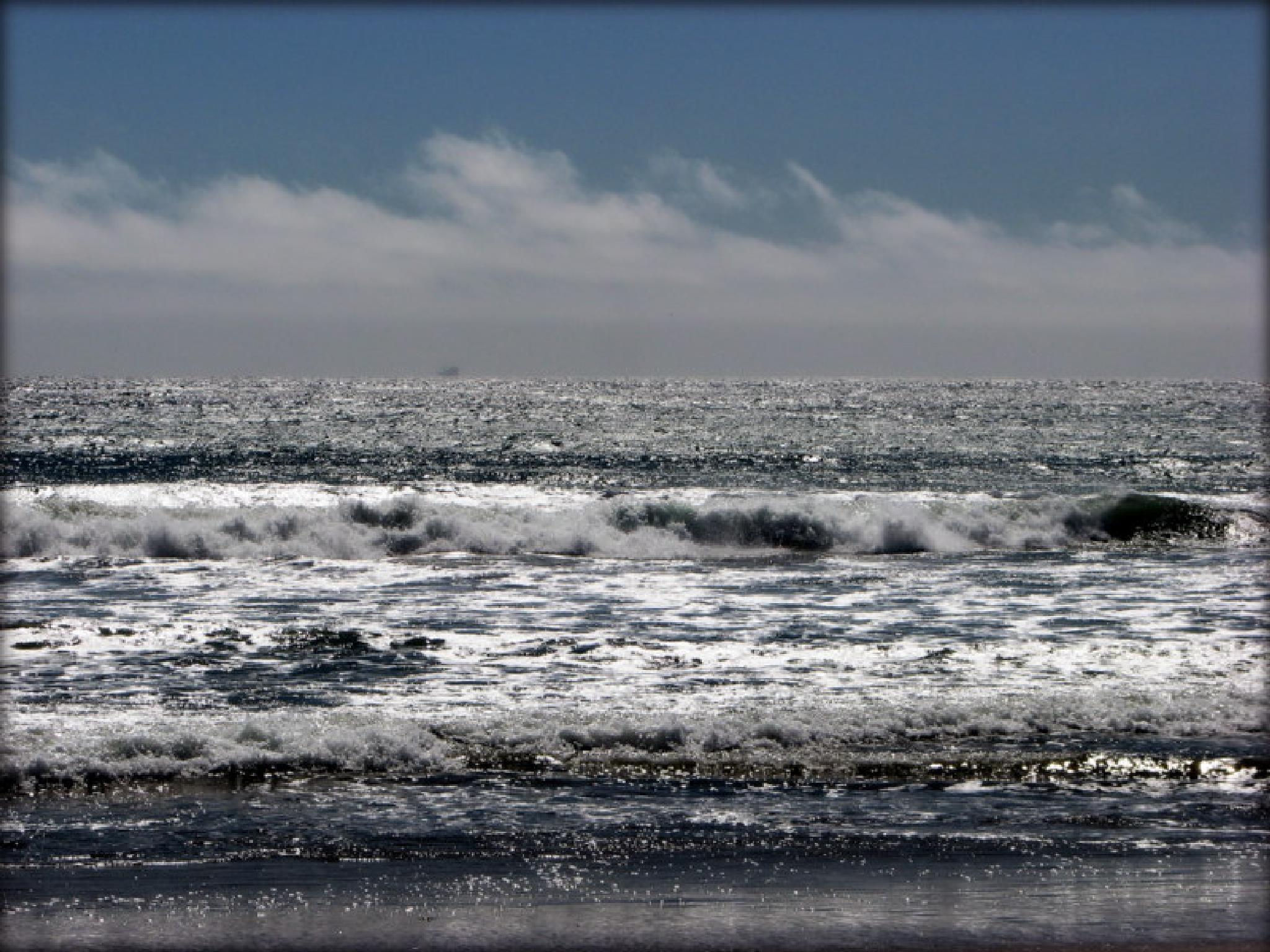 Land,Sea,Sky by laurieleblancrickaby