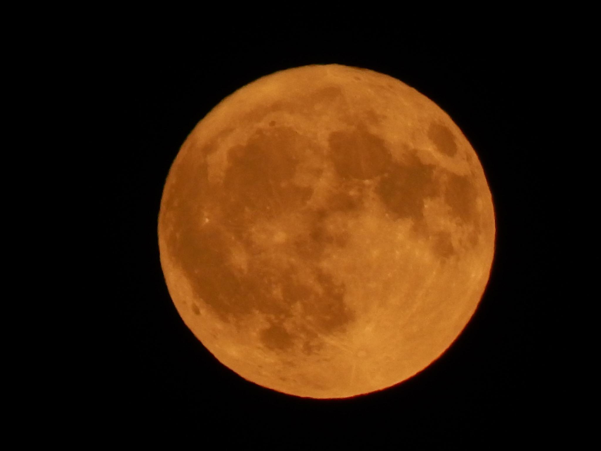 moon by Goran Vuletic