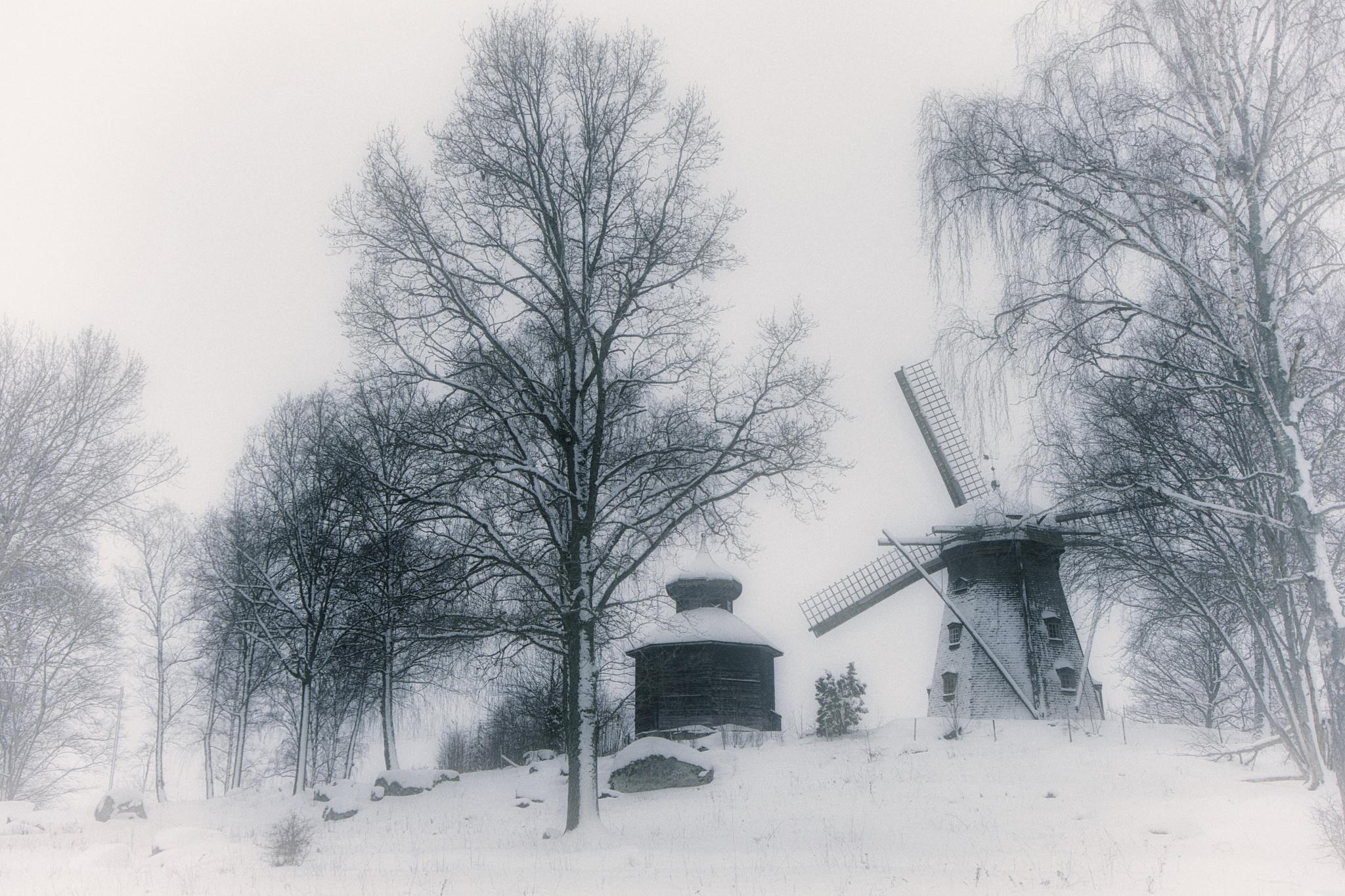 A misty winterday by Lars-Ove Törnebohm