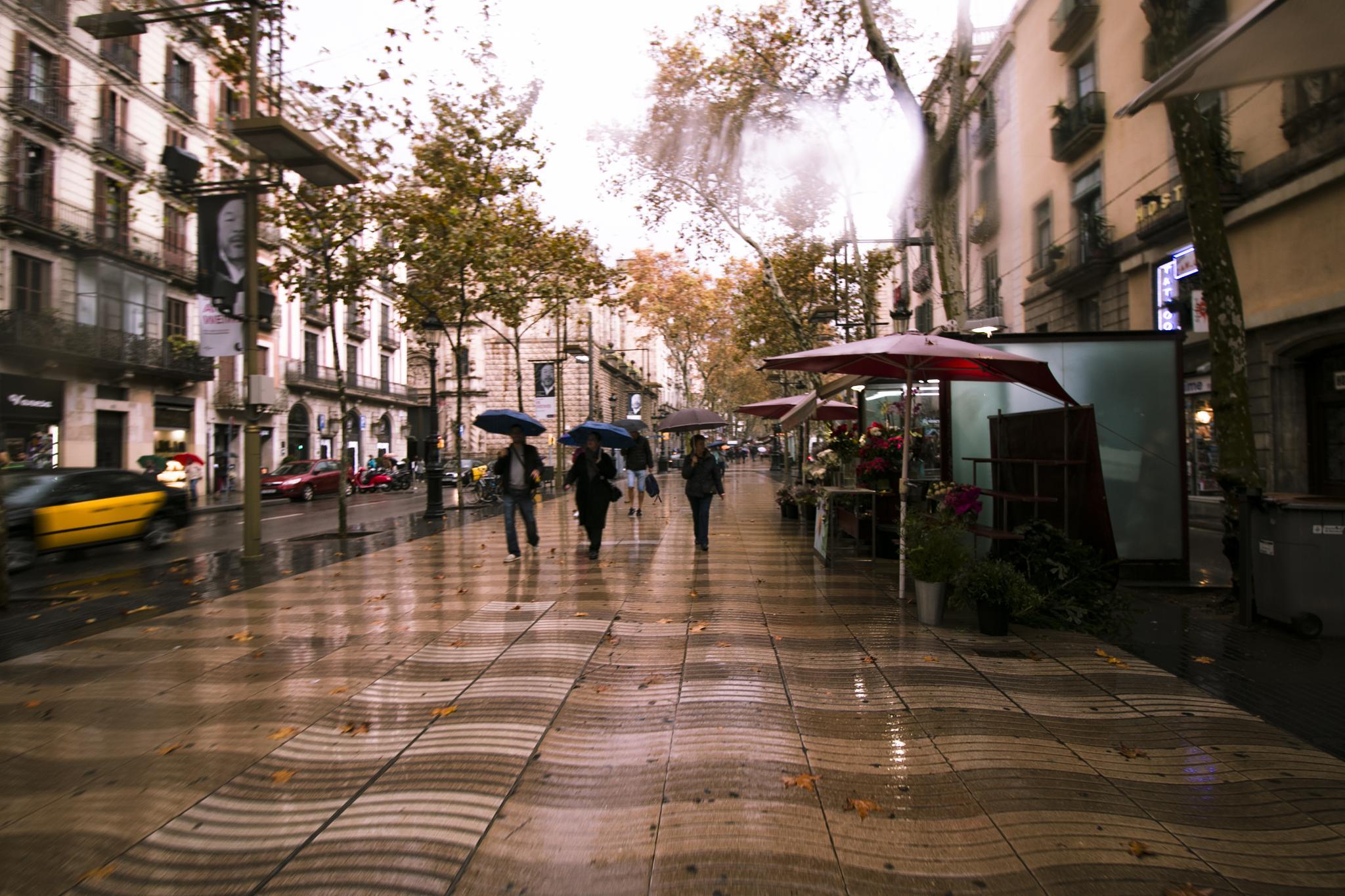 dia de lluvia by carmenvich