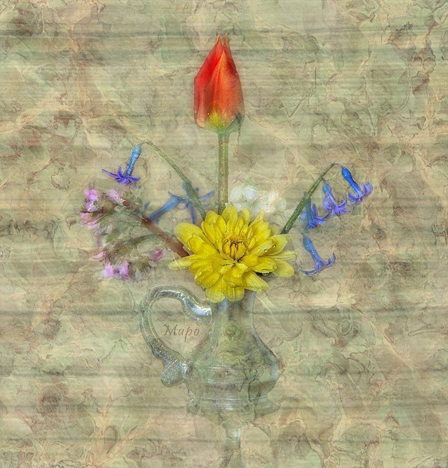 Flowers by Miroslav.Marinov