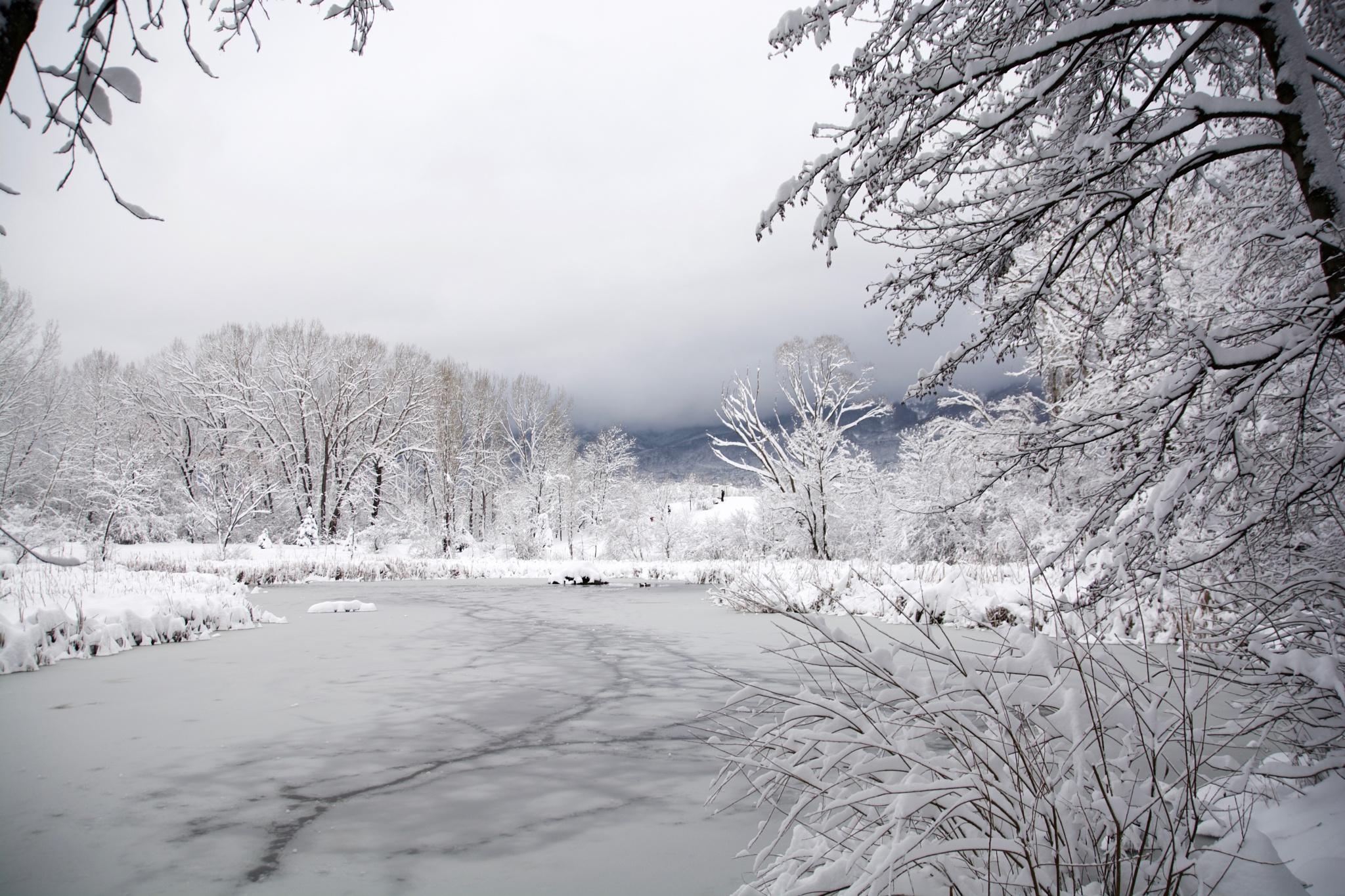 Frozen lake by Nikolay Todorov