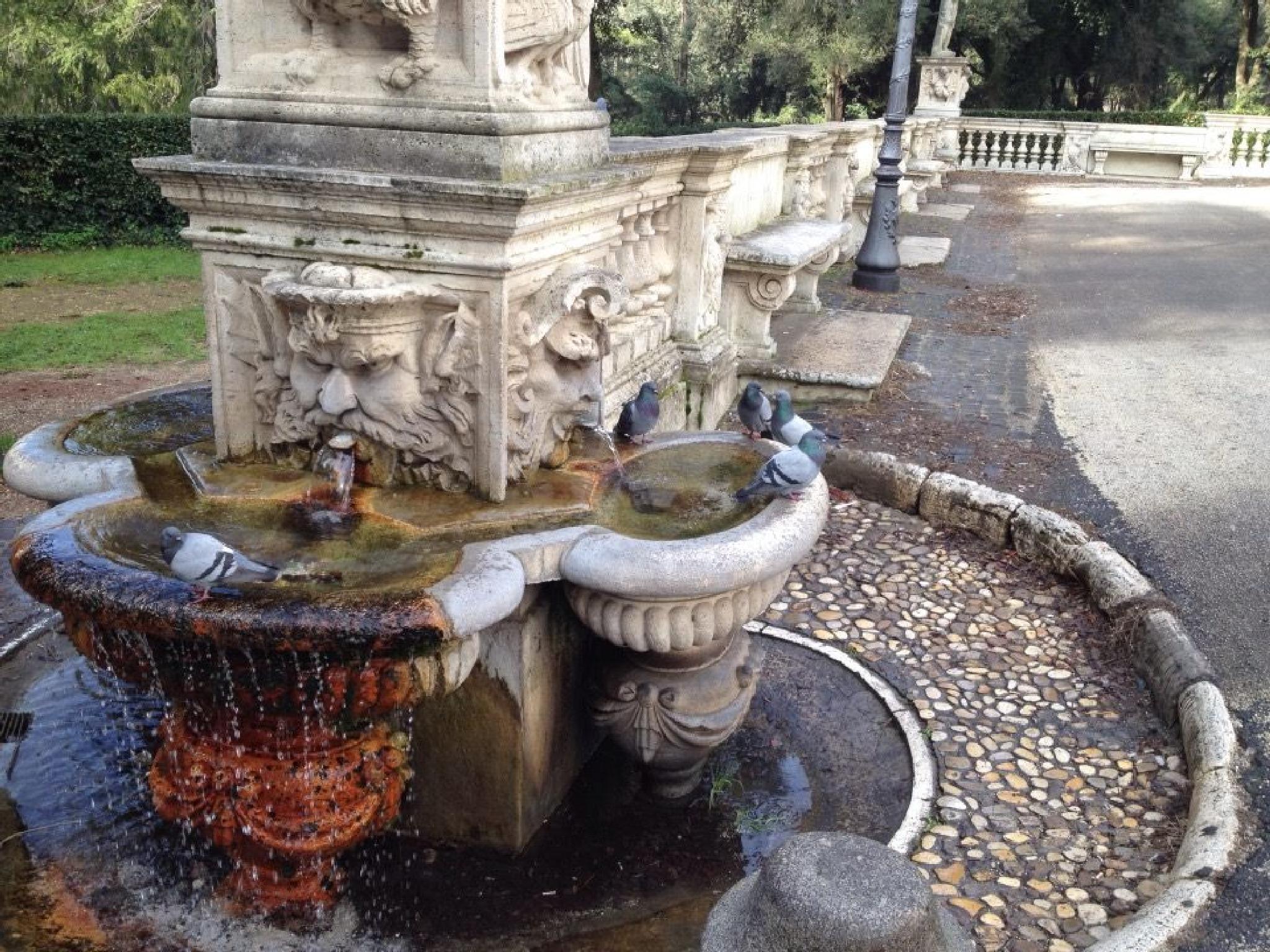 Villa Borghese, Rome by grossiroma