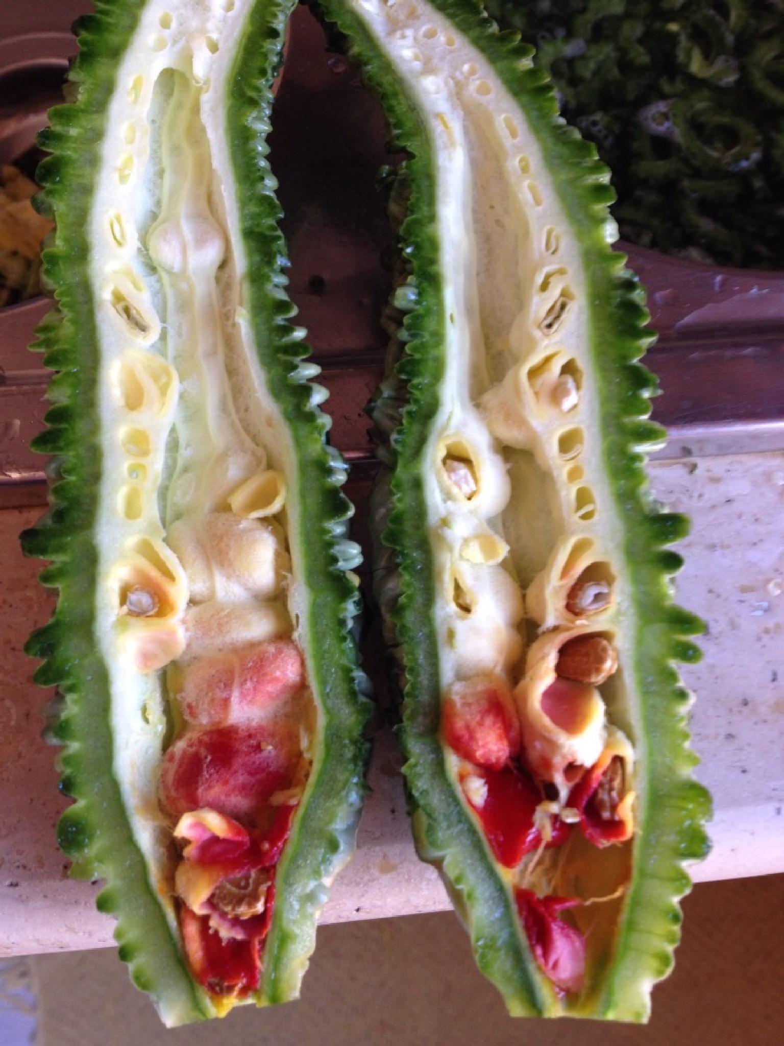 Sour cucumber, split. by grossiroma