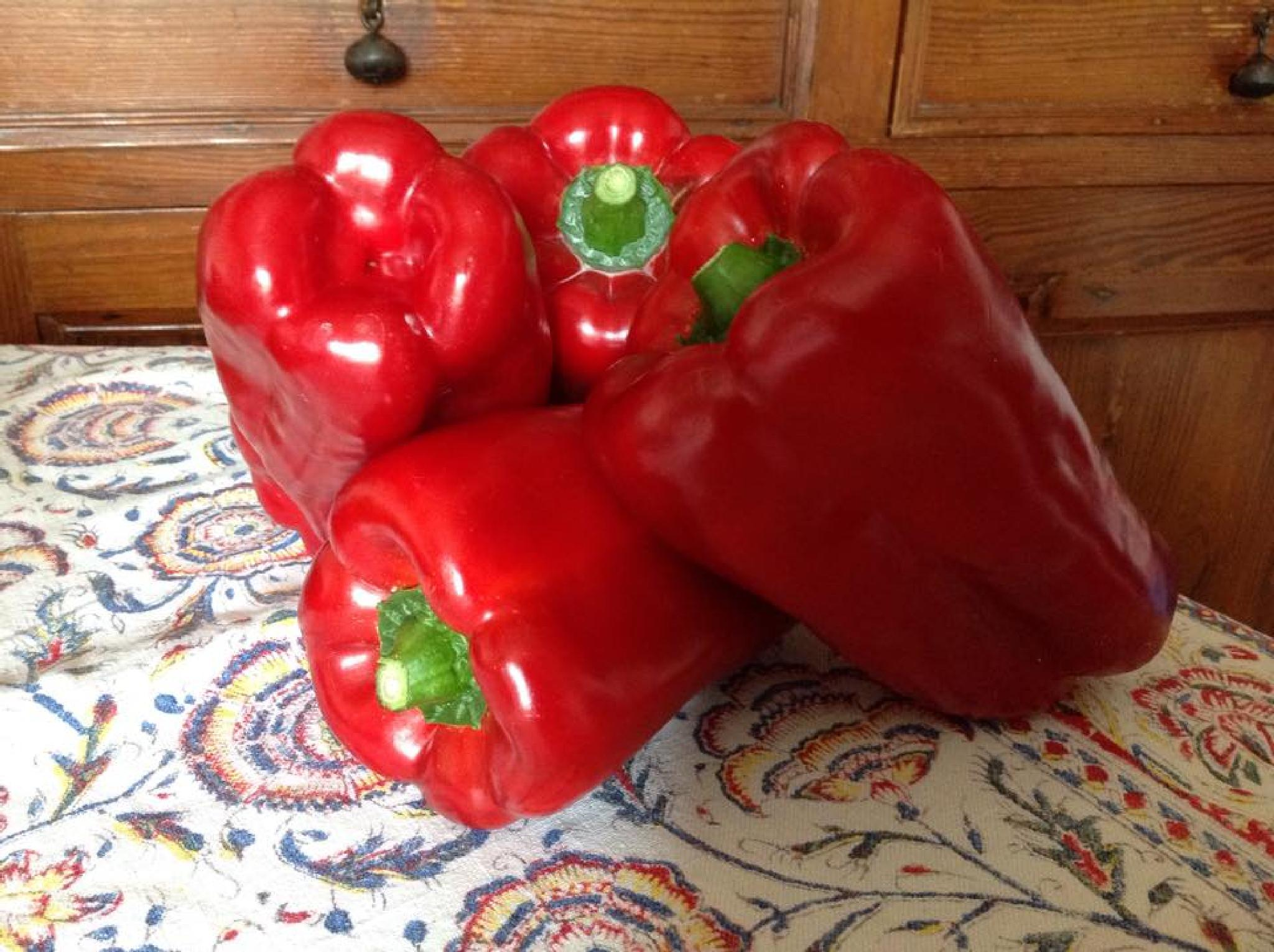 Capsicums by grossiroma