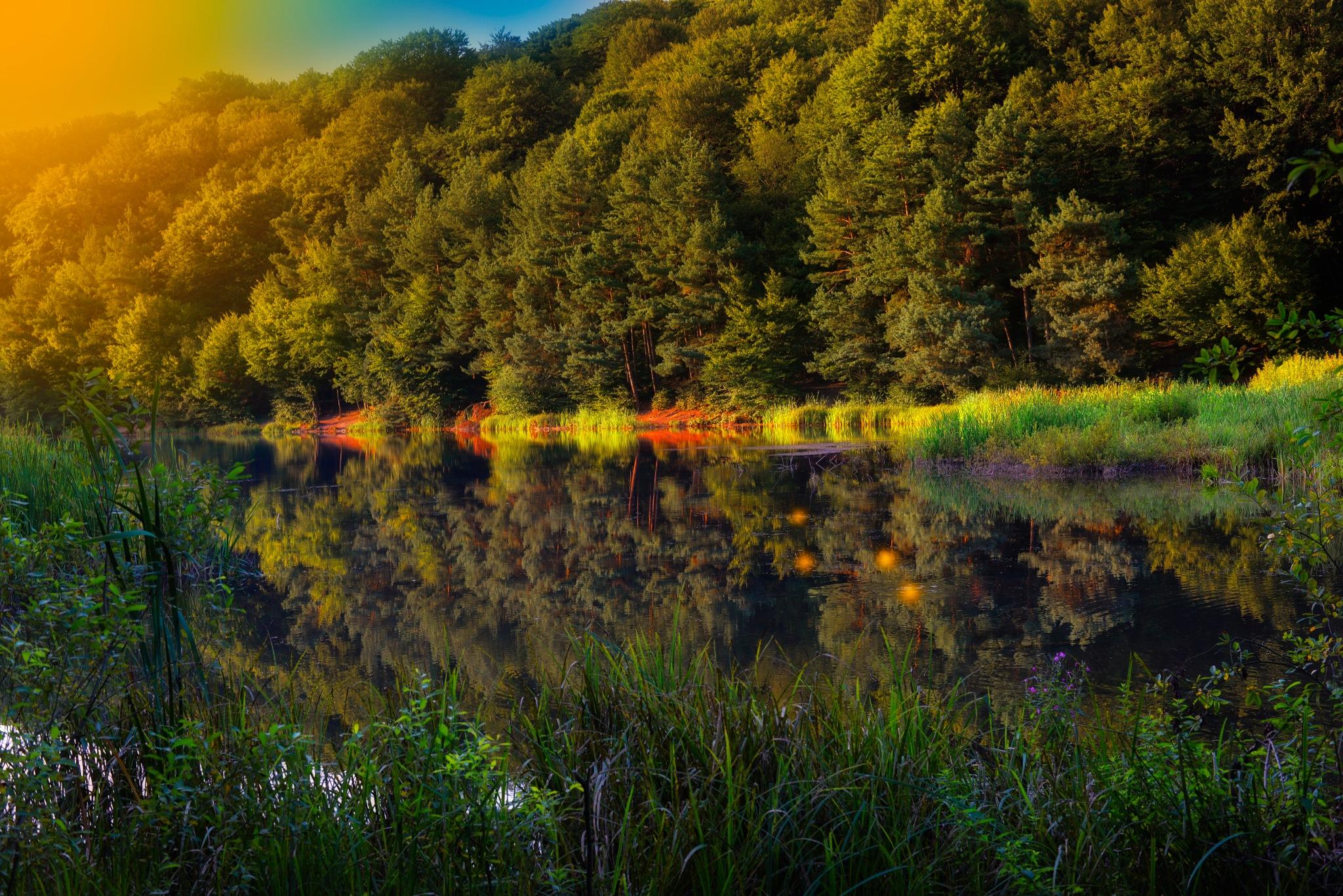 sunset by colisniuc sorin-valerian