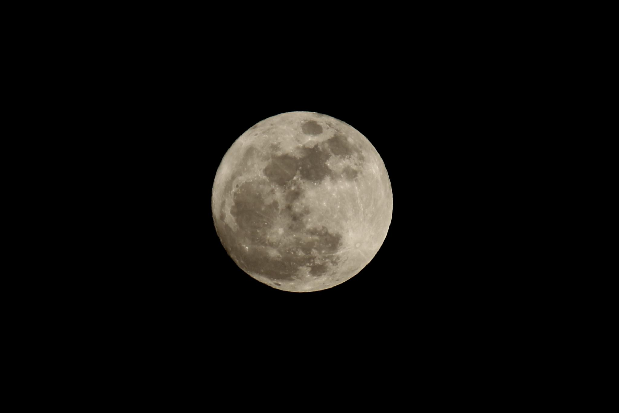 Moon by mikizh.zhekov
