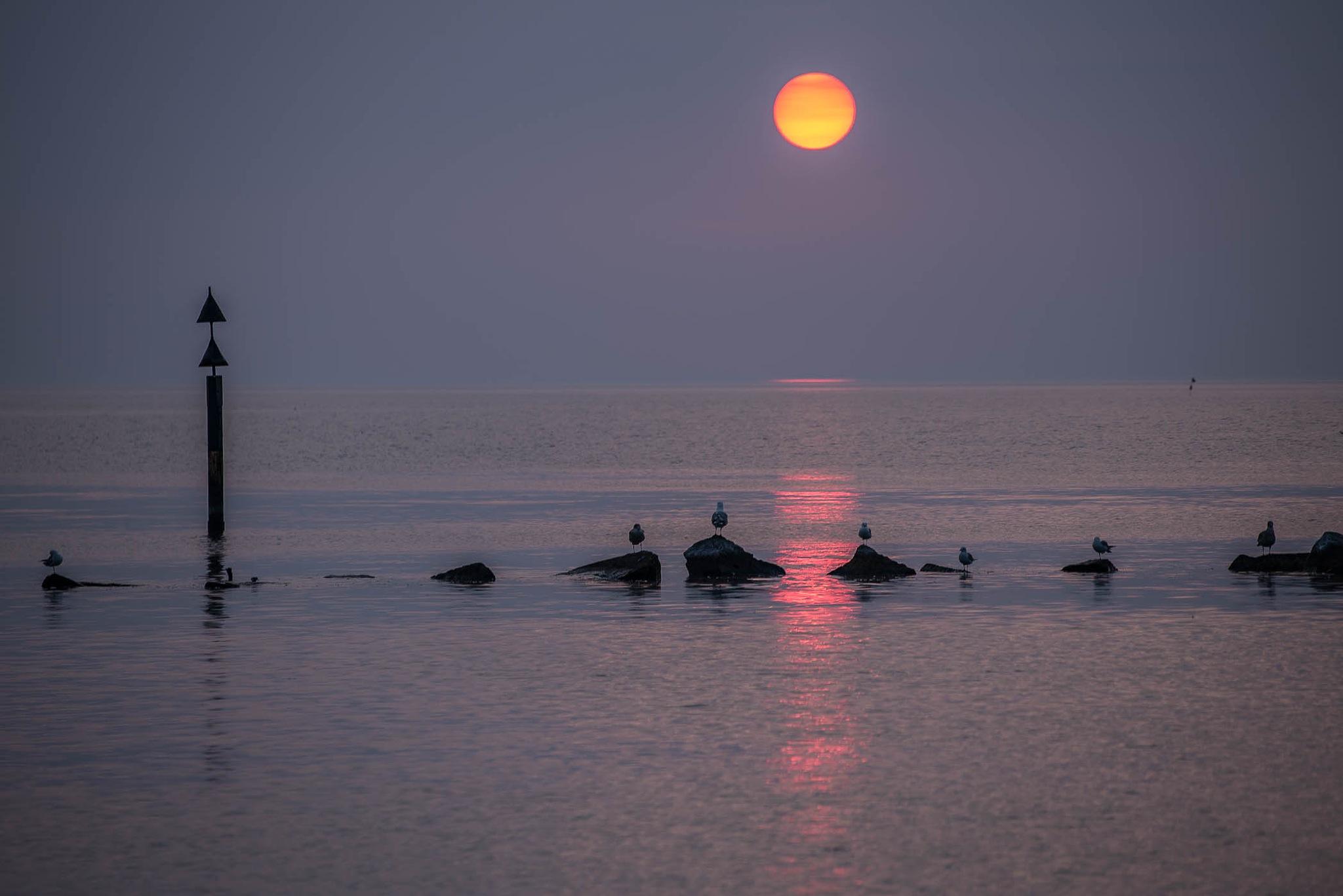 sundown by elu