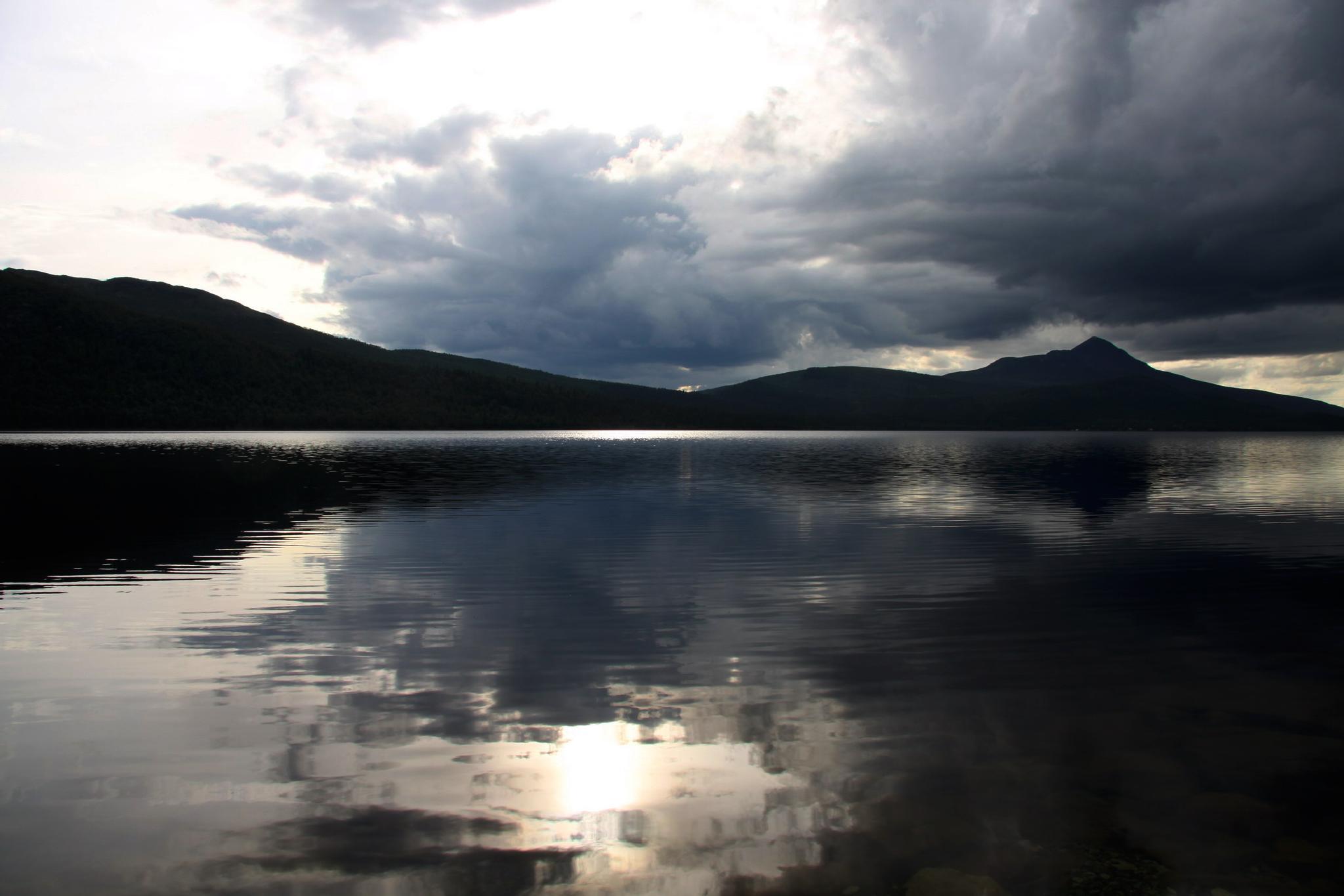 Reflections by Per Lindskog