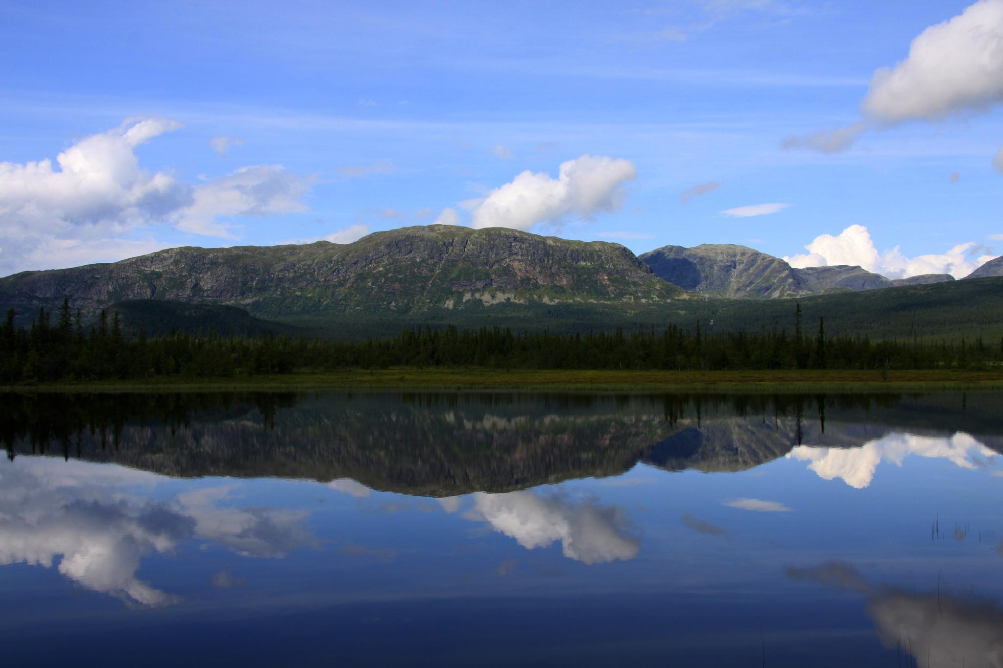 Reflection or just upside down by Per Lindskog