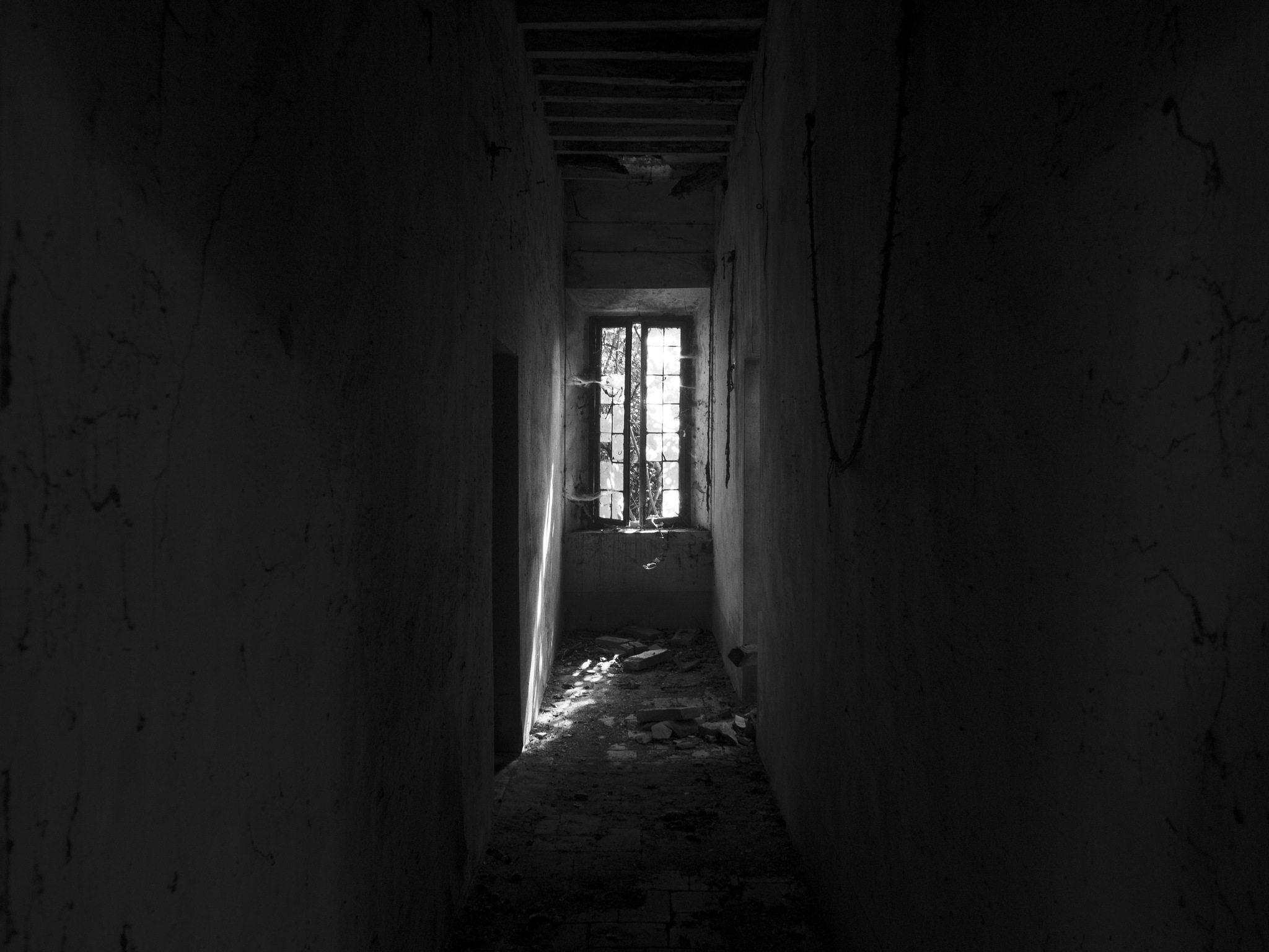One more window by gabriele.zucchella