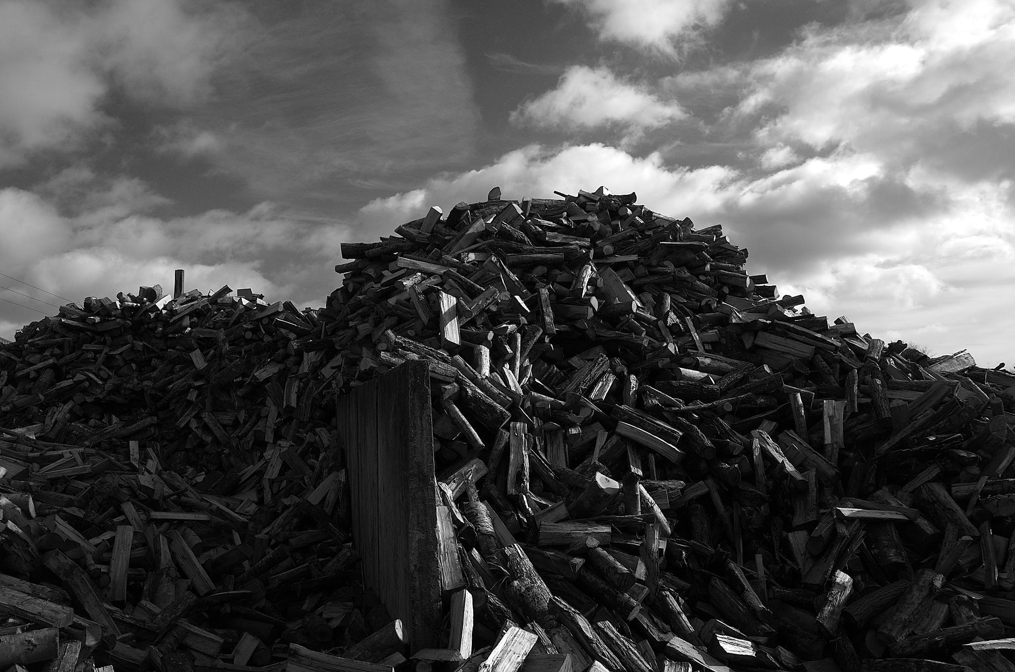 """""""Sawmill 06"""" by Isabel Saij"""