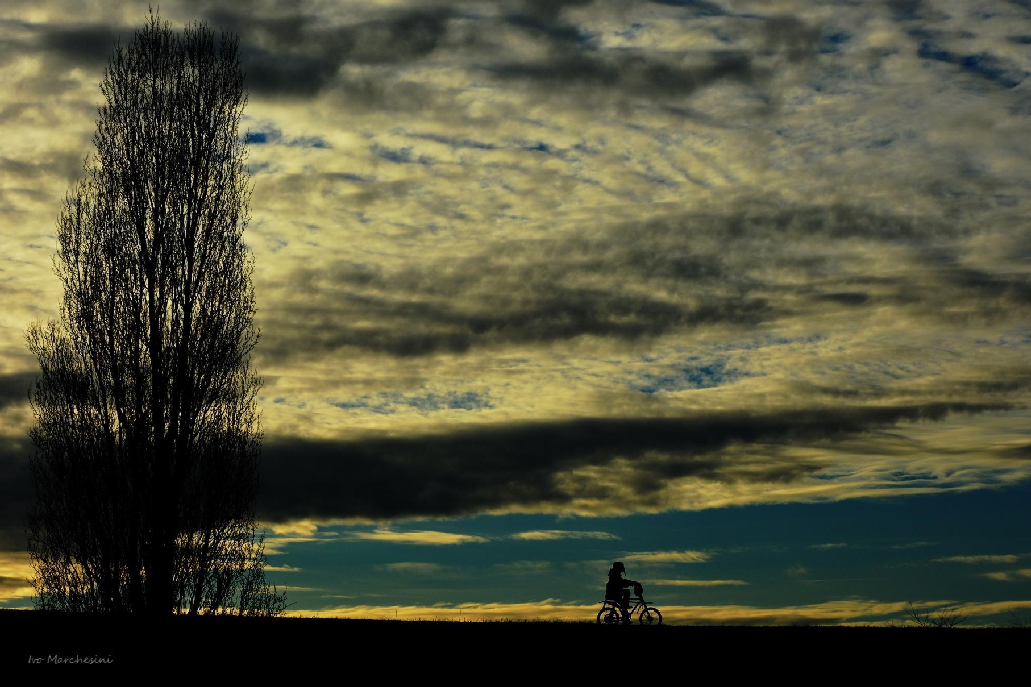 Silhouette, il piccolo ciclista. by ivo markes