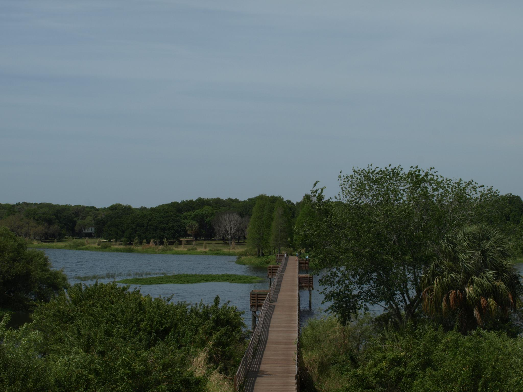 Boardwalk Across the Lake by Jo Jurkiewicz