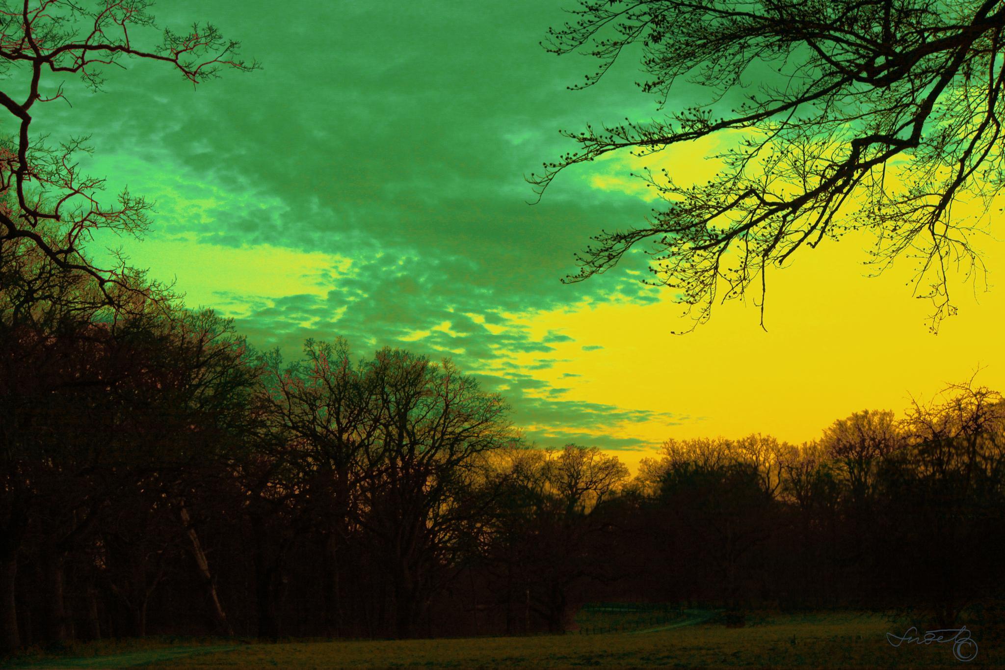Evening serenity II by snezana.lindskog