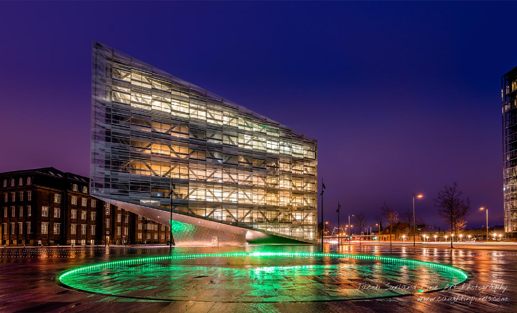 Copenhagen Building by Jacob Surland