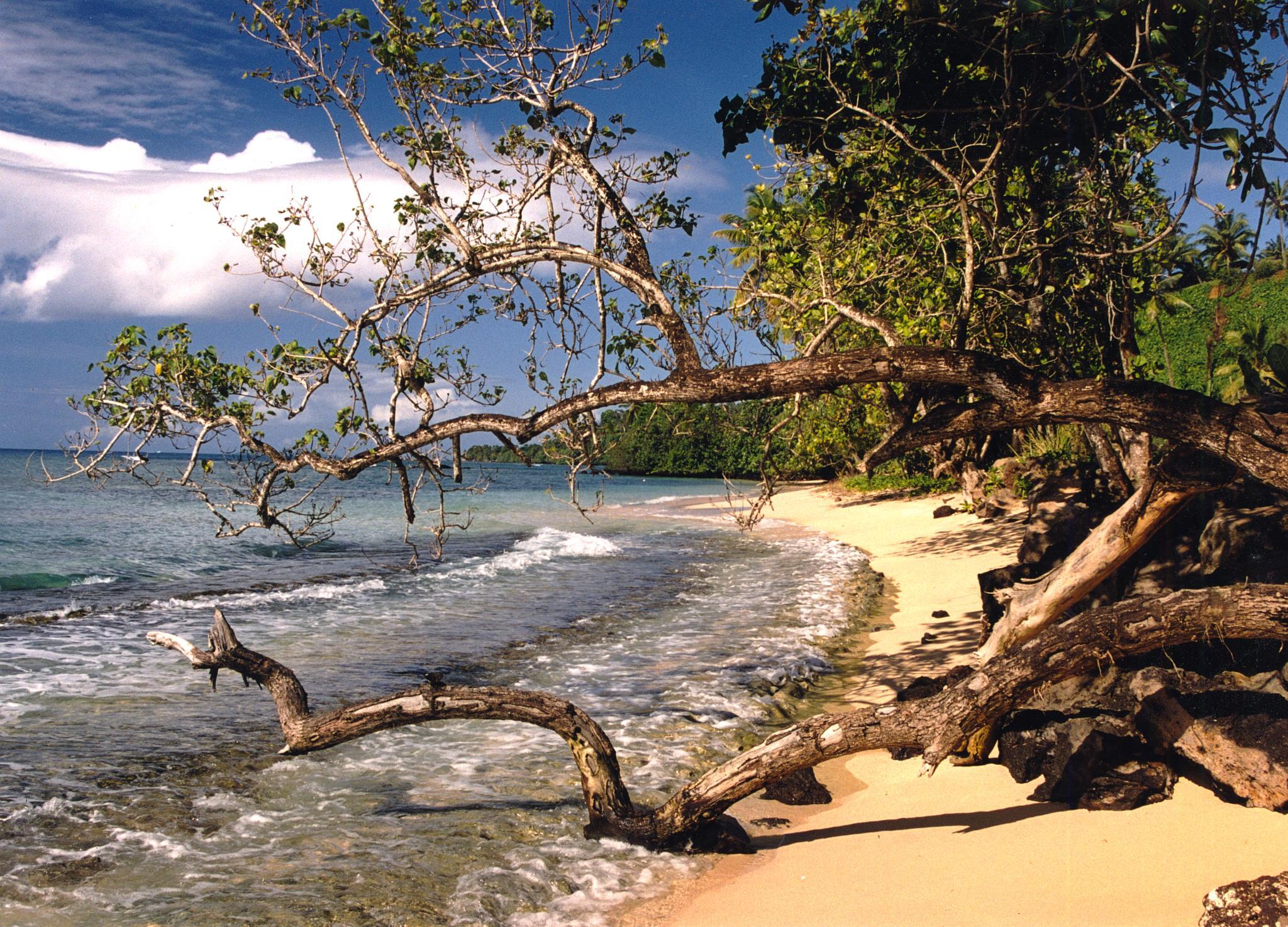 Tavioni Fiji by Peter Puddiphatt