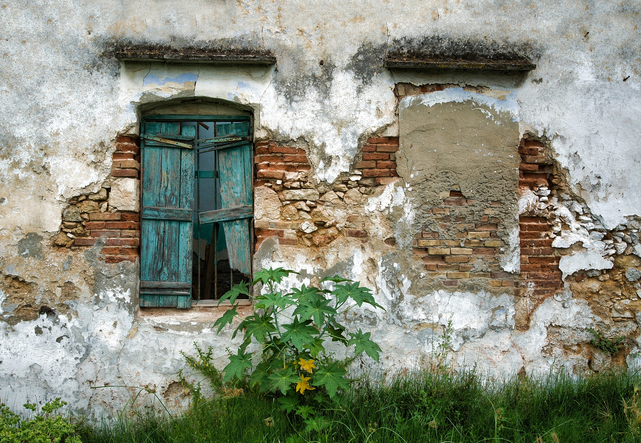 Old House - Crete by Peter Puddiphatt