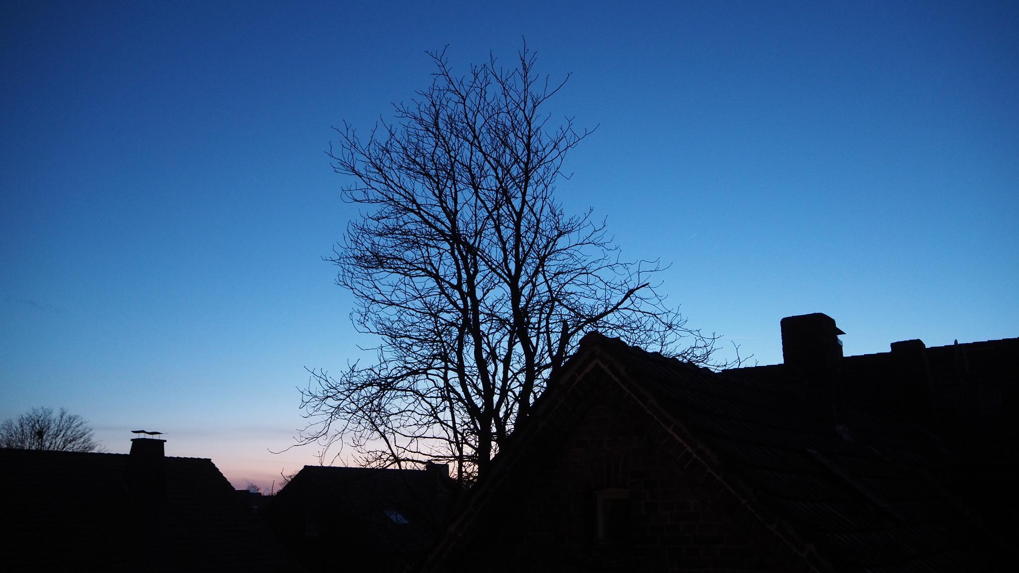klarer Abendhimmel by heinzbanger
