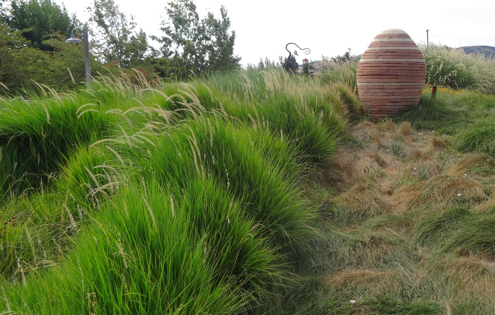 Wild grass garden / Stone Egg by Carolyn Chase