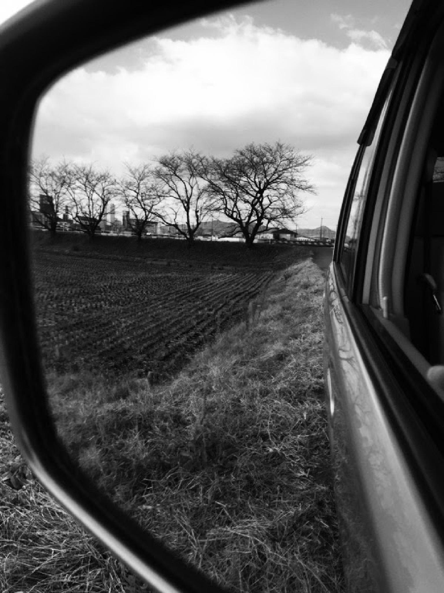 Reflection.. by jessy b