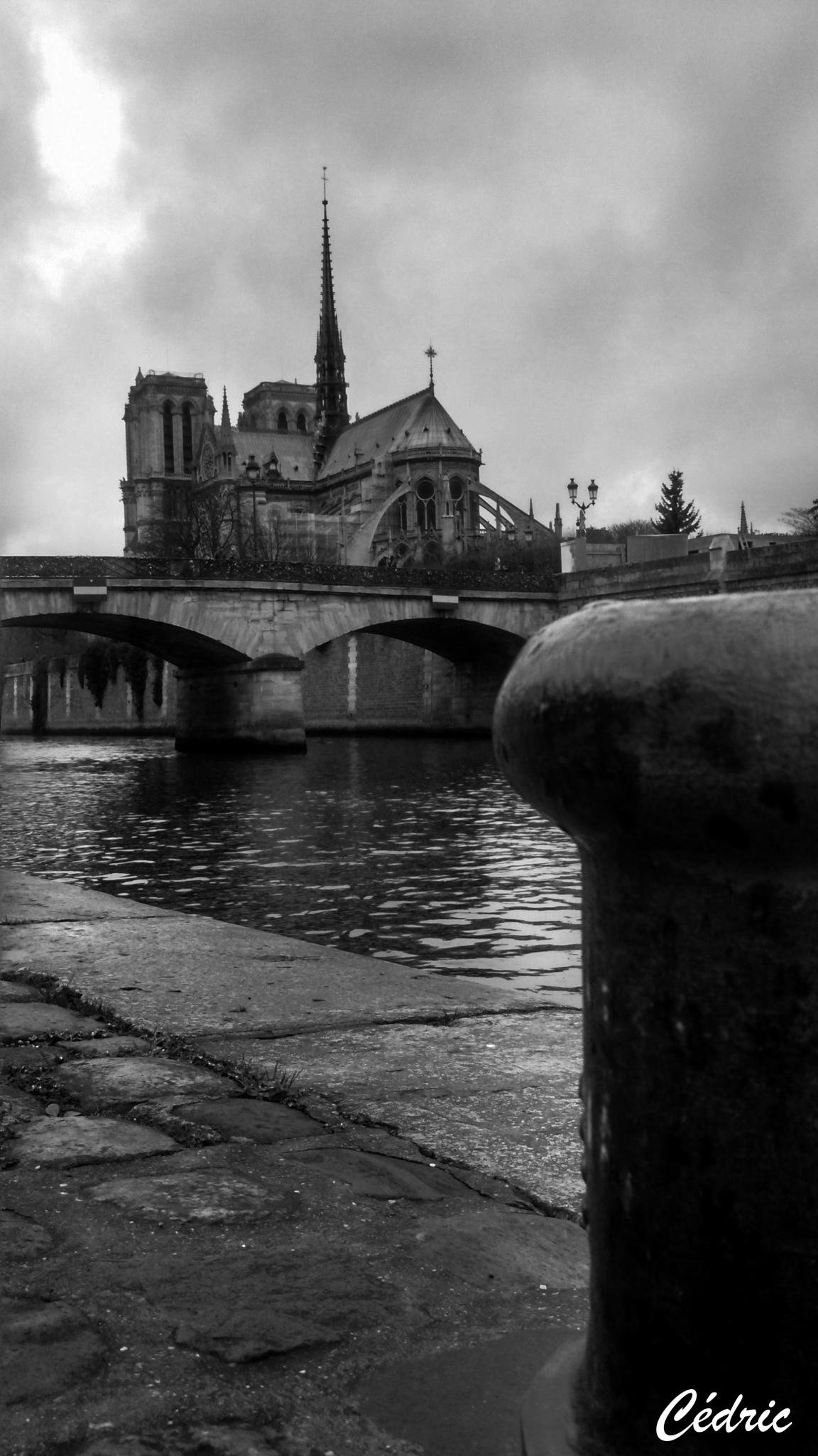 quai de notre dame de paris by cedricloy8