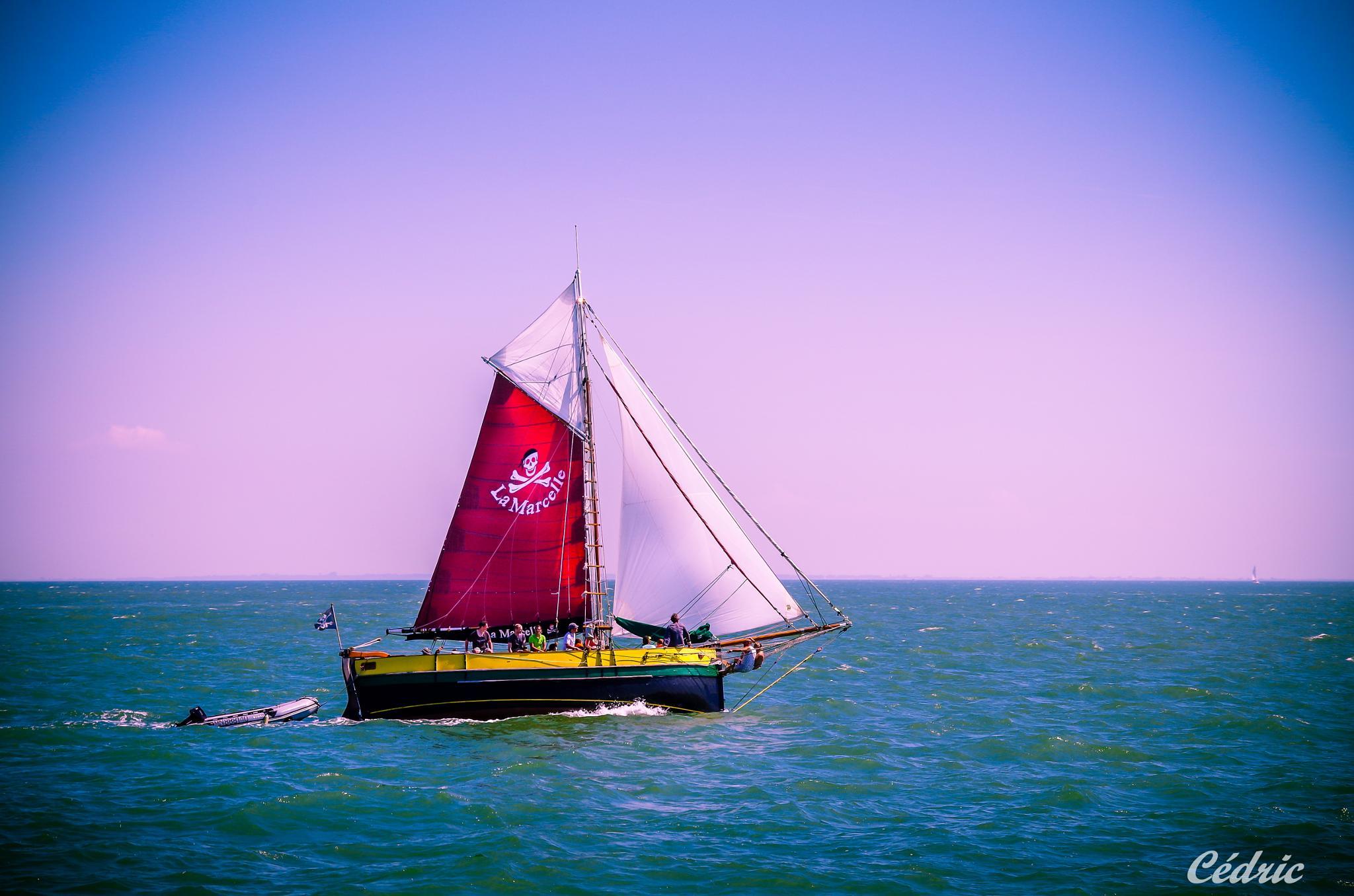 voilier au large de fort boyard by cedricloy8