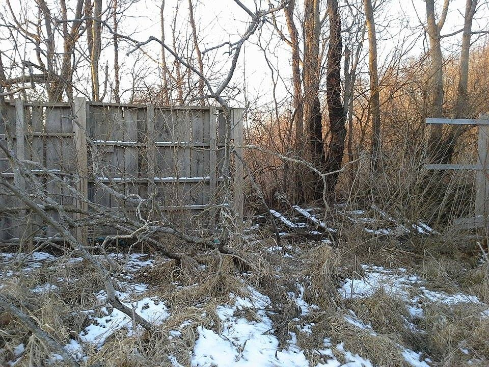 Beyond the fence by ruth.l.montes