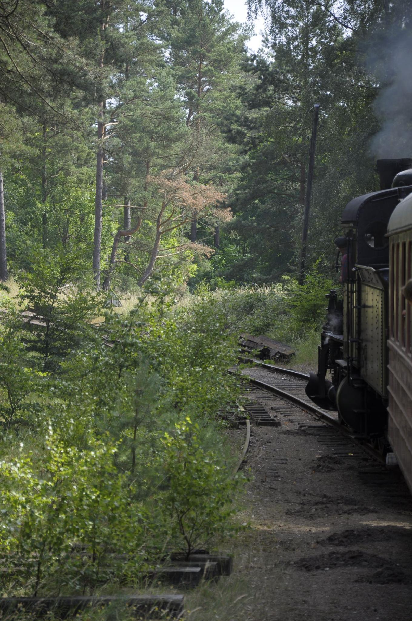 Railway by Swejonaz