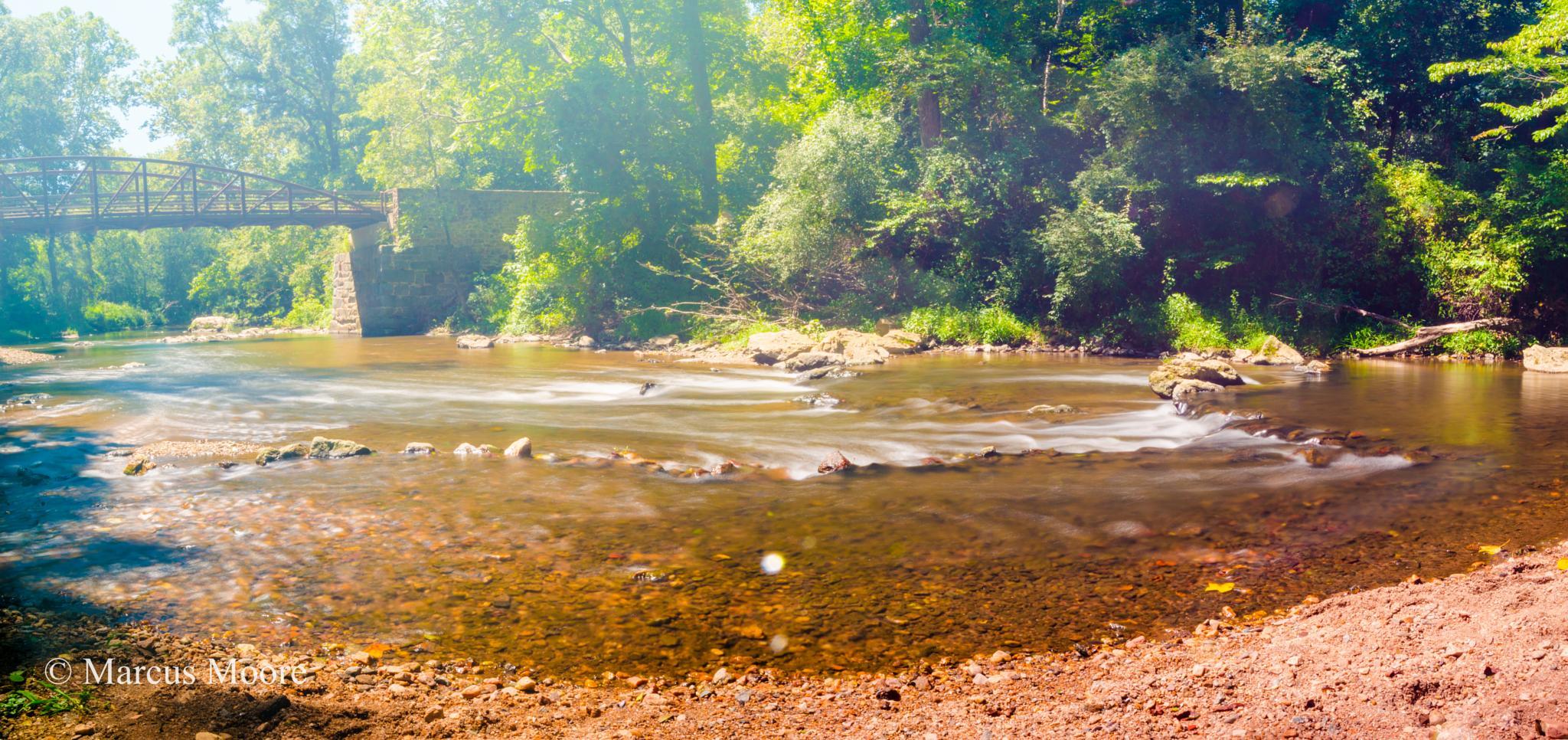 Along the Creek by mvmoorephotography