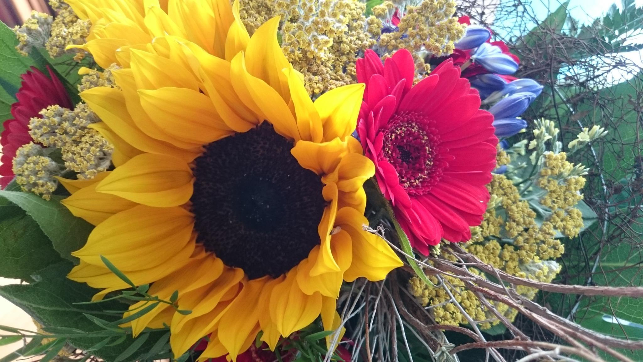 Photo in Fine Art #soleil #fleur #bouquet