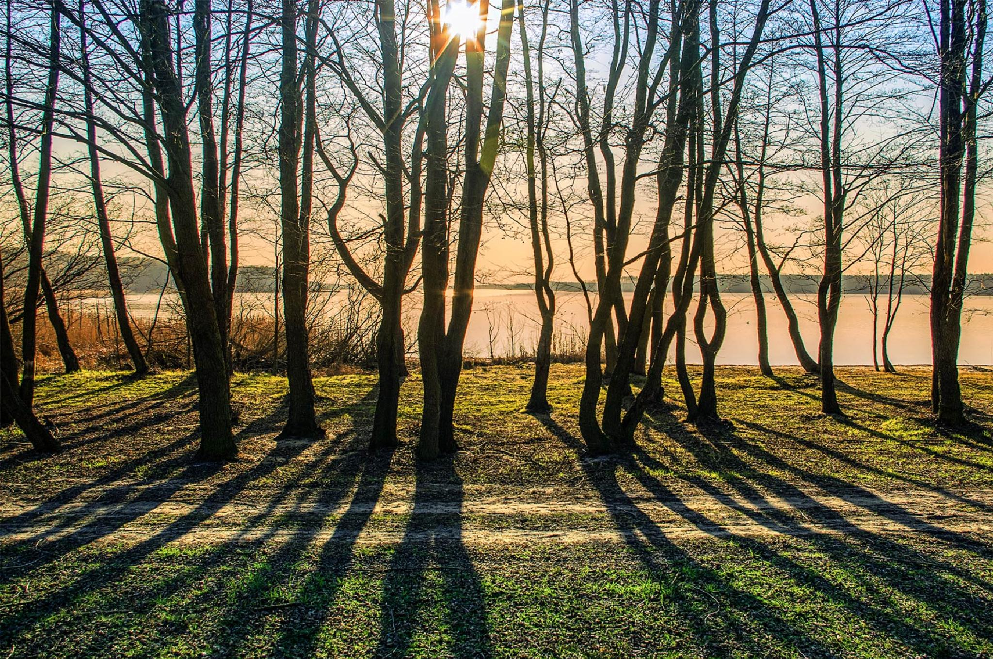 light and shadows by Tomasz Marciniak