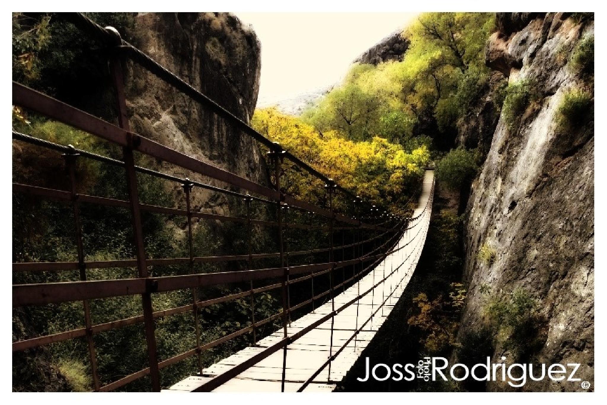 Los Cahorros Puente by Joss Rodríguez
