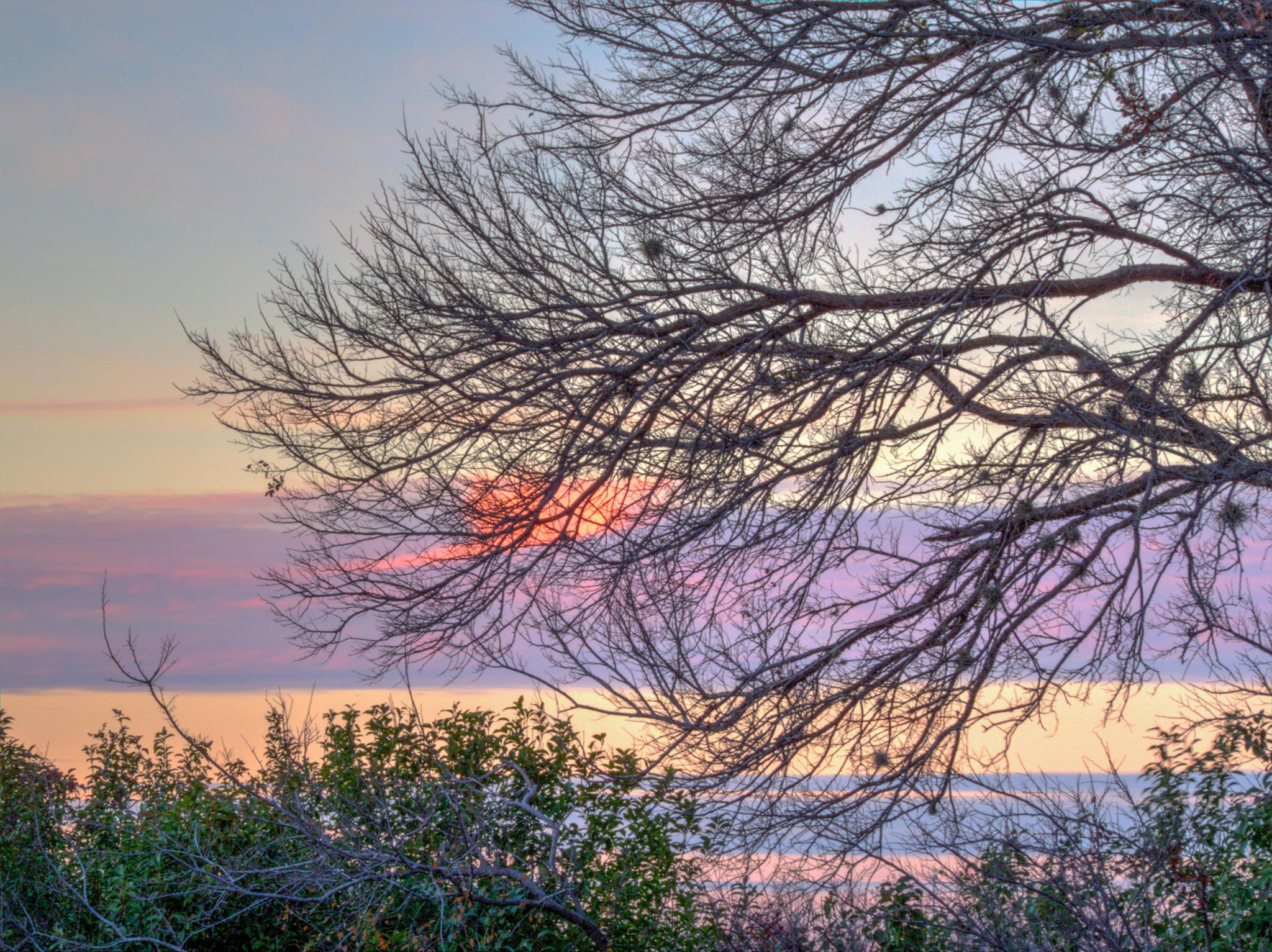 Sunset From My Patio by Jill Rapley