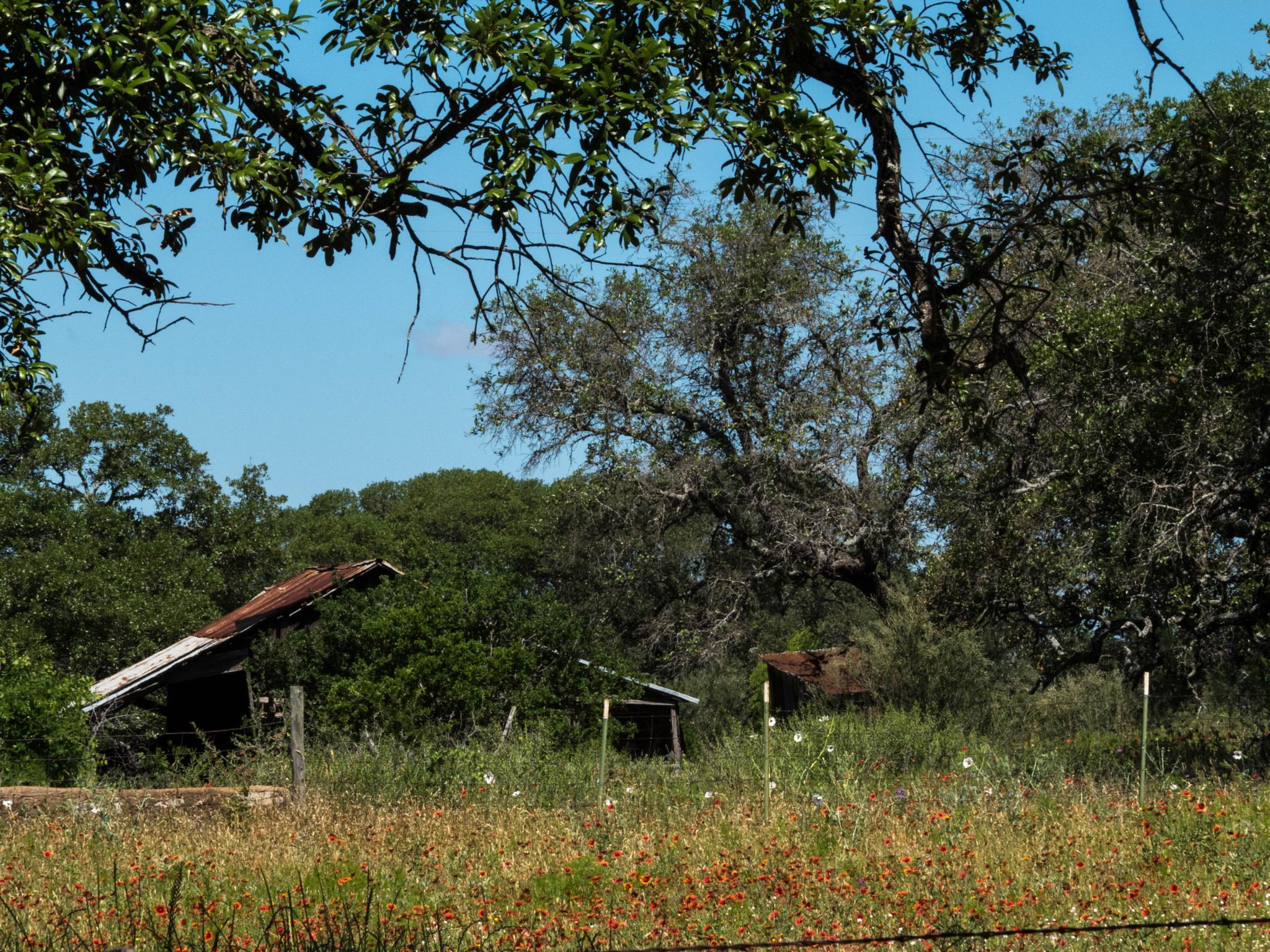 Abandoned Farm House by Jill Rapley